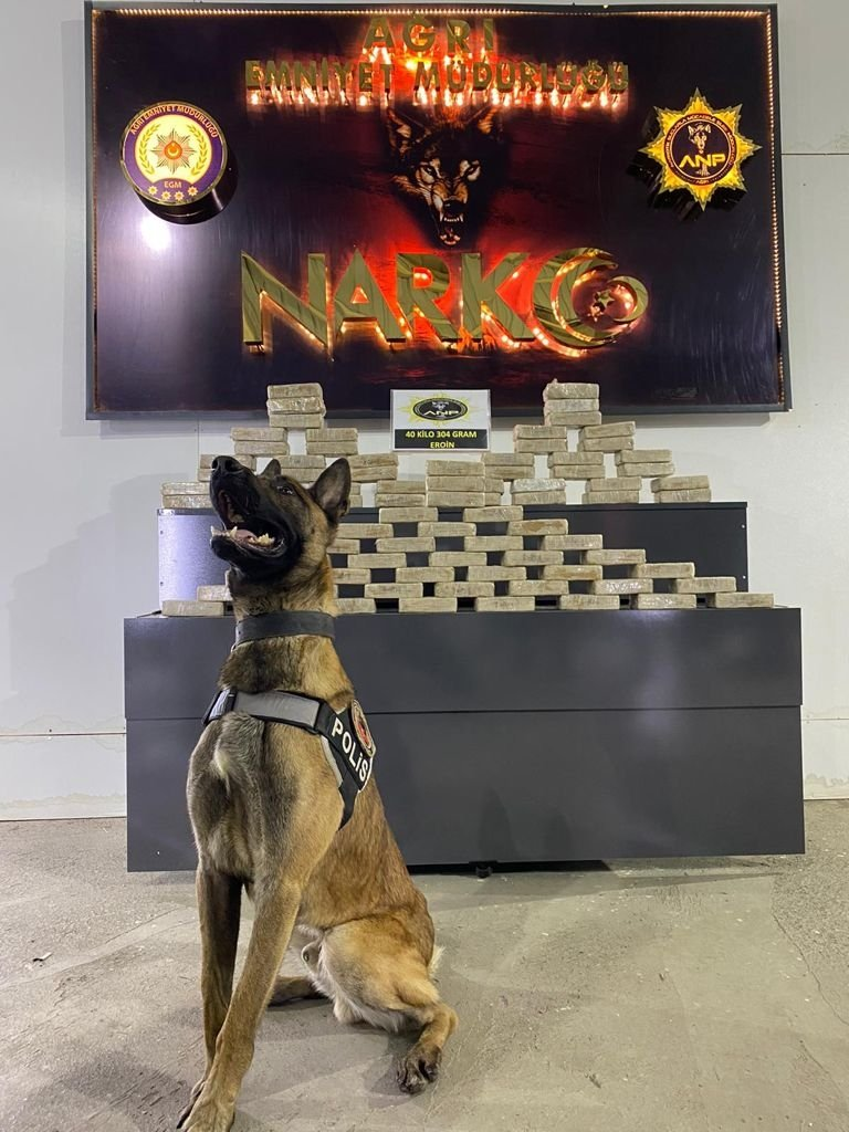 A sniffer dog poses in front of the heroin seized in the operation at the police headquarters in eastern Ağrı province, Turkey, on May 23, 2021. (AA Photo)