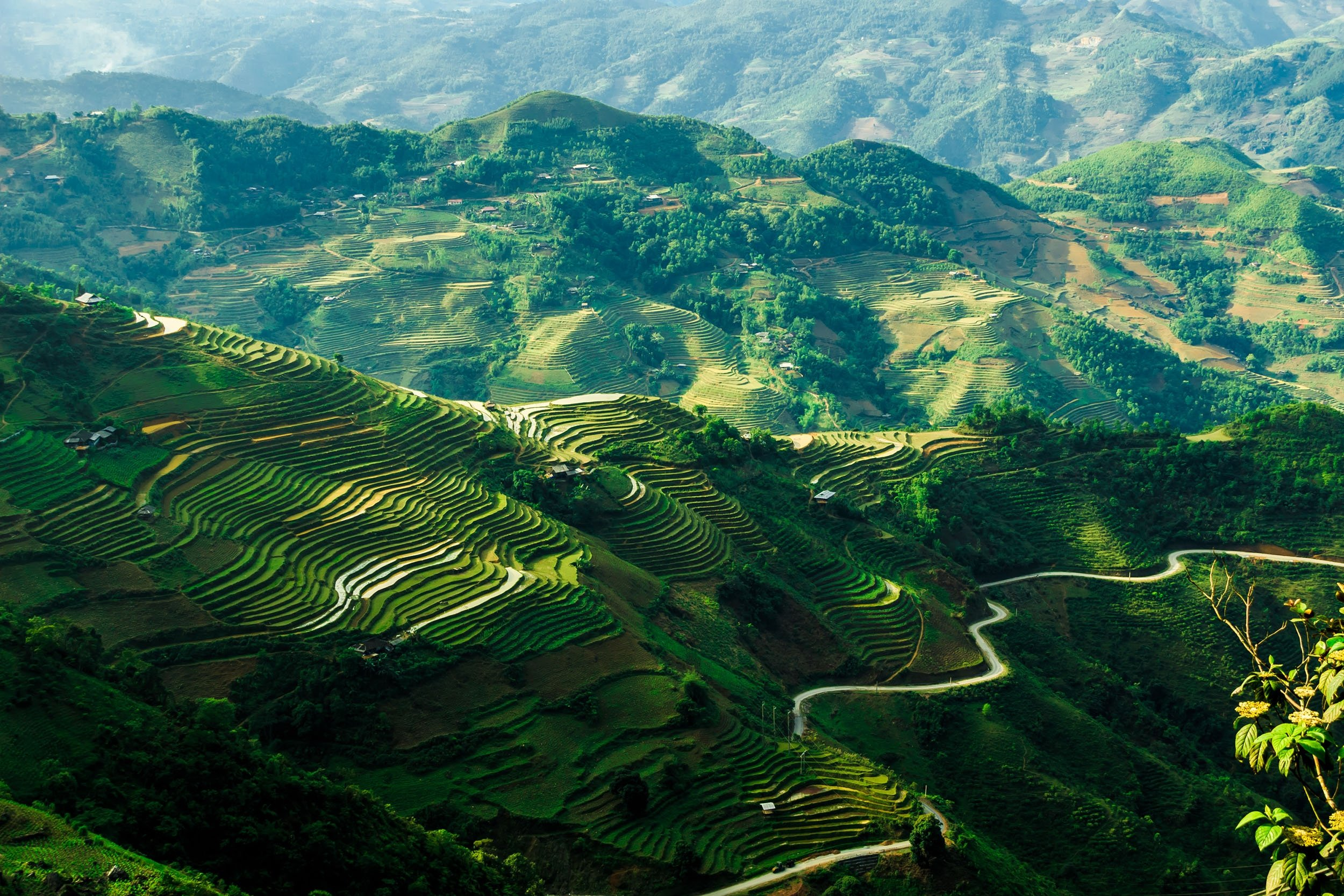 The color green covers entire landscape withrice fields high up in the mountains of Ha Giang, Vietnam.(Shutterstock Photo)