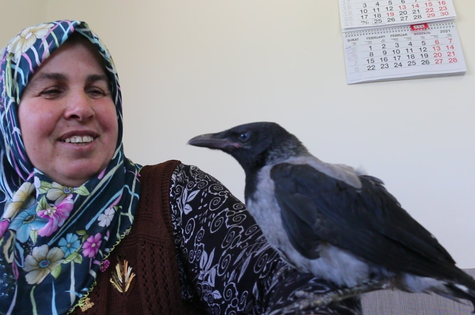 Fatma Yanıkoğlu poses with Hasan perched atop her arm, in Bolu, northern Turkey, May 26, 2021. (AA PHOTO)