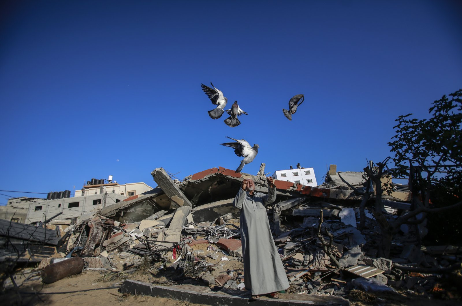 A Palestinian man plays with his birds above the ruins of his home, destroyed in recent Israeli airstrikes in Gaza city, Palestine, May 23, 2021. (Photo by Getty Images)