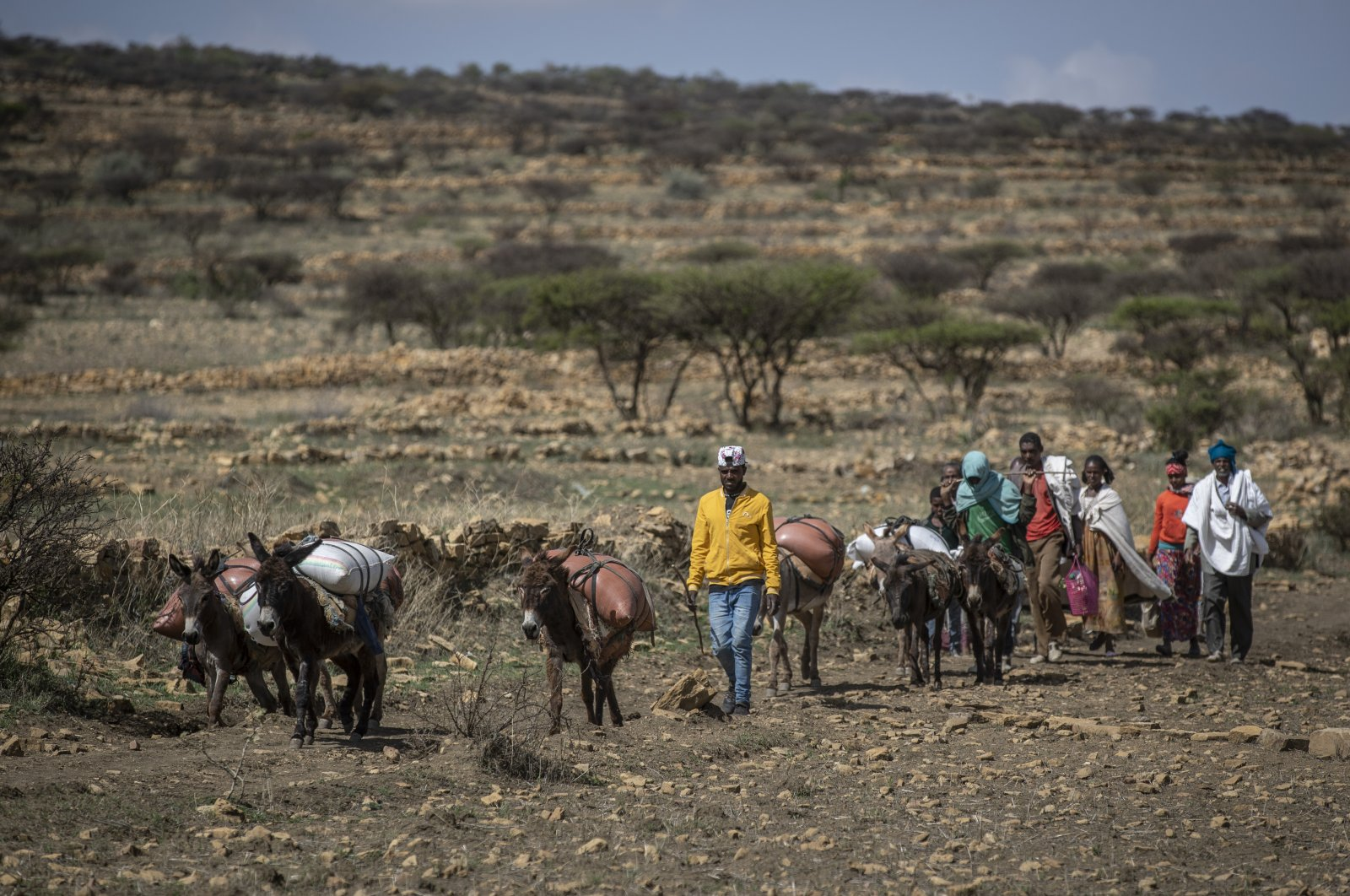 People walk from a rural area towards a nearby town housing a food distribution center operated by the Relief Society of Tigray, near the town of Agula, in the Tigray region of northern Ethiopia, May 8, 2021. (AP Photo)