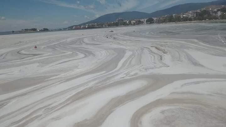 Sea snot covers the Erdek coastline in Balıkesir, western Turkey, May 29, 2021. (Photo taken from Twitter/@ozcanyuksek)