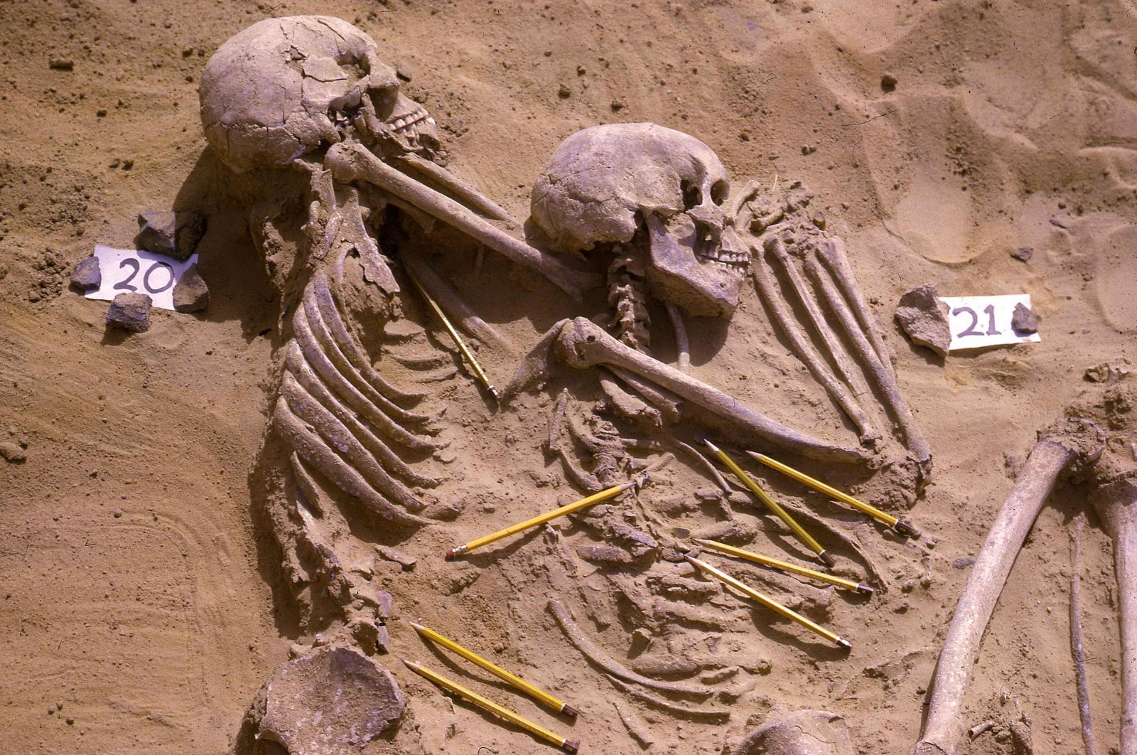 The double burial of individuals identified as JS 20 and JS 21 from among the 13,400-year-old Jebel Sahaba remains, some of the earliest evidence of human warfare, with pencils marking the position of associated stone artefacts, Sudan. (Reuters Photo)