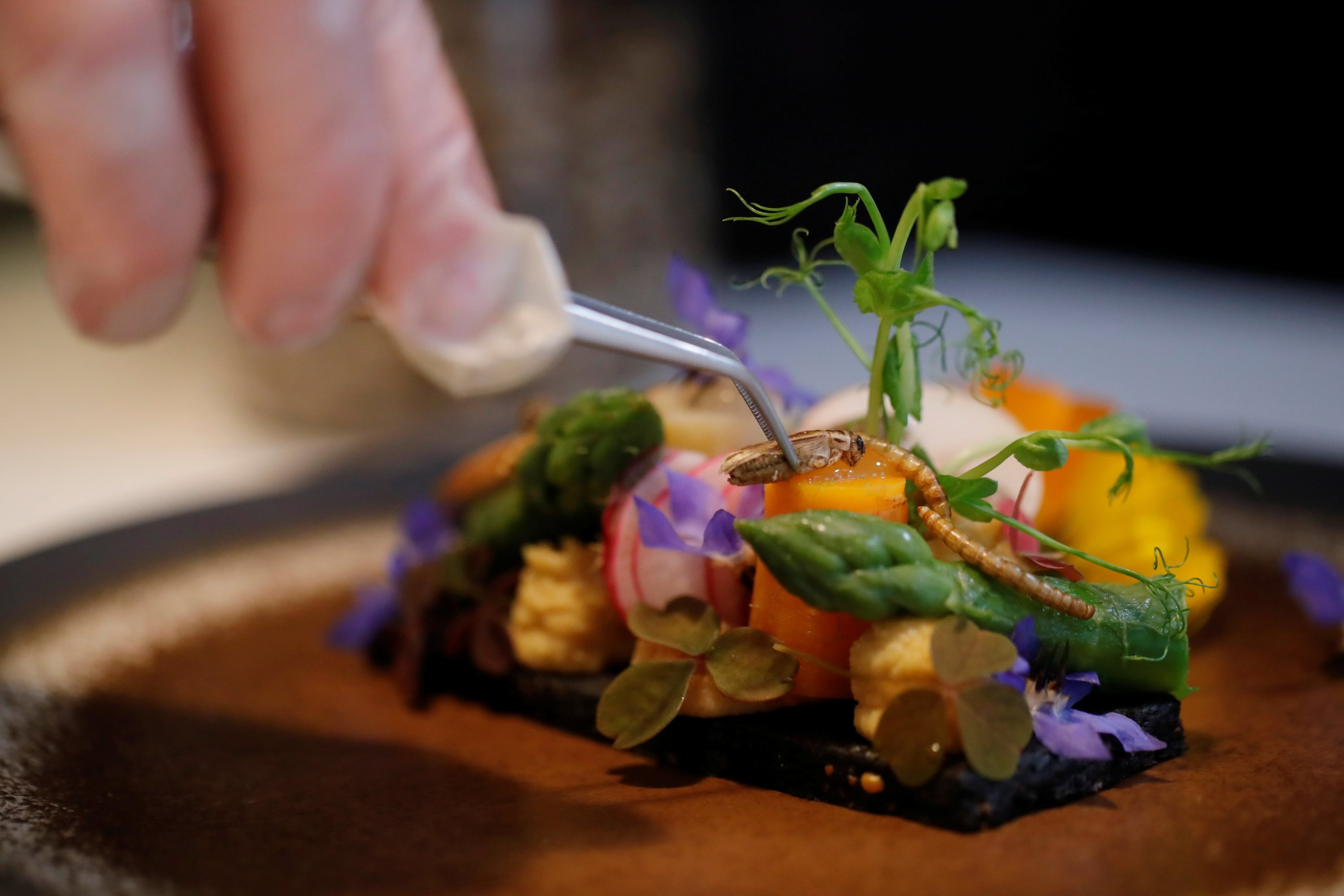 French chef Laurent Veyet puts a cricket on a dish in his restaurant Inoveat serving insect-based food in Paris, France, May 12, 2021. (Reuters Photo)