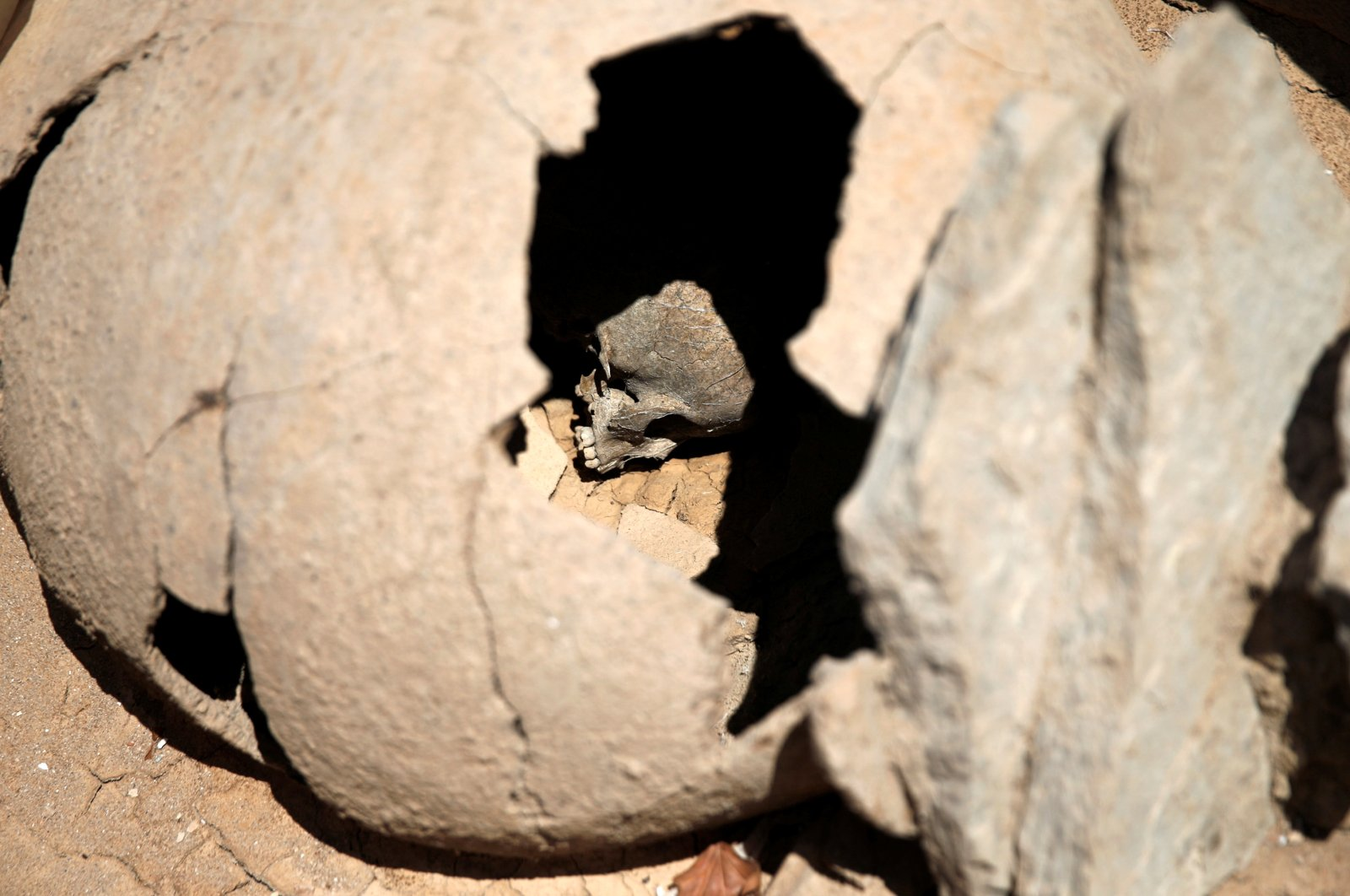 The skull of a child is seen inside a clay jar, a common practice for the burial of babies and children in ancient Greece known as pot-burial, at the ancient Falyron Delta cemetery in Athens, Greece, July 27, 2016. (Reuters Photo)