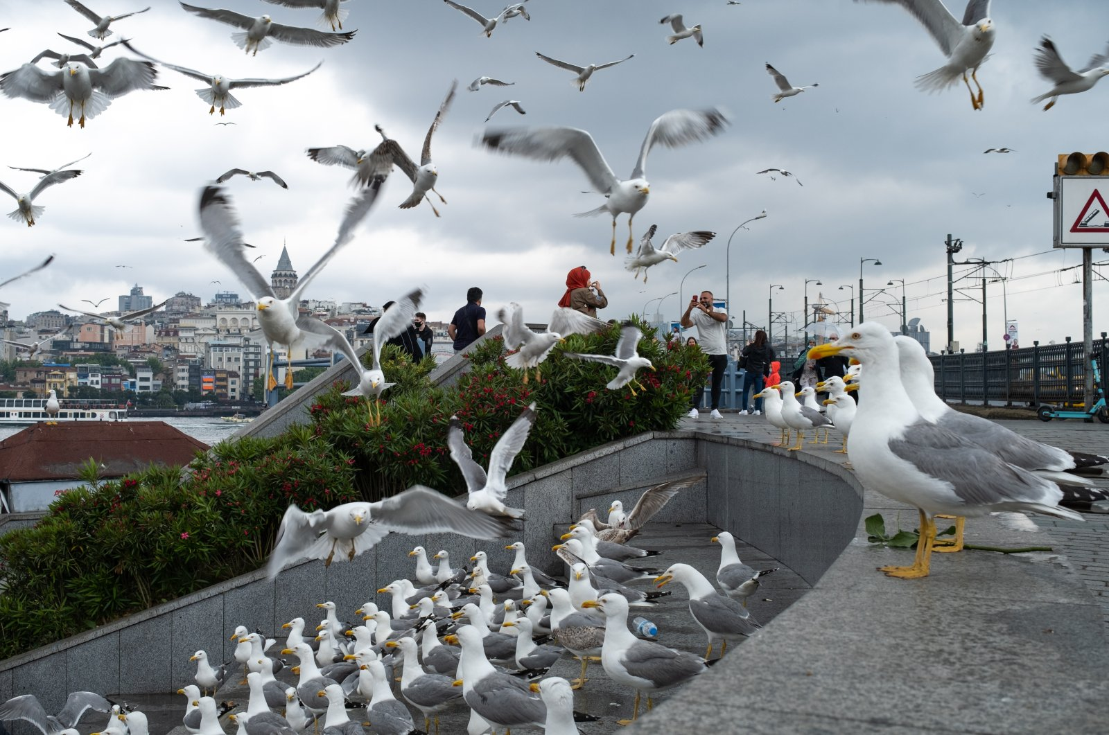 Tourists enjoy the city's flocks of seagulls amid the coronavirus lockdown for local citizens in the Eminönu district, Istanbul, Turkey, May 29, 2021. (Photo by Getty Images)