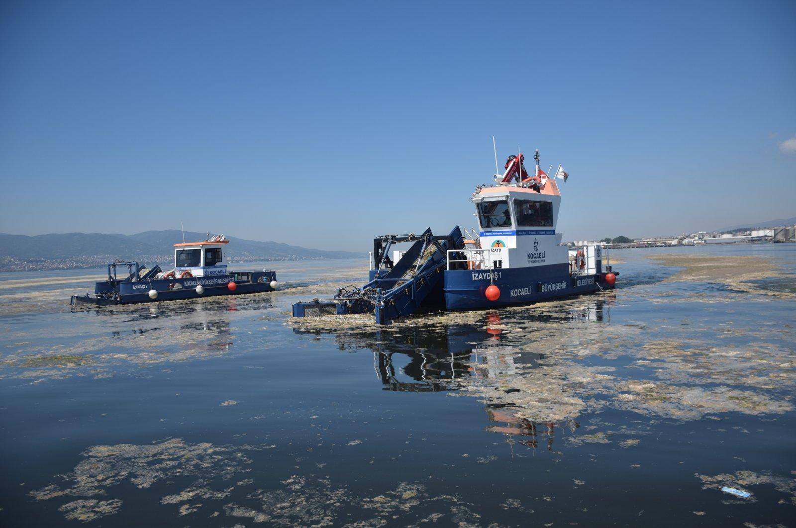 "A boat cleaning up ""sea snot"" in Kocaeli, northwestern Turkey, June 9, 2021. (AA PHOTO)"