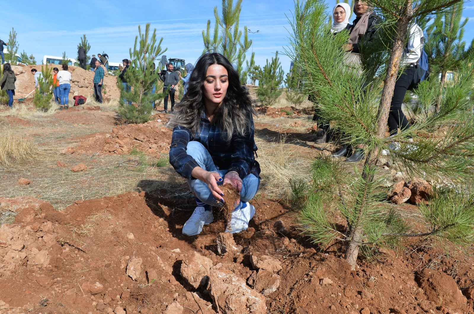 A woman plants a tree at the campus of Munzur University as part of a mass planting campaign, Tunceli, eastern Turkey, Nov. 11, 2019. (AA PHOTO)
