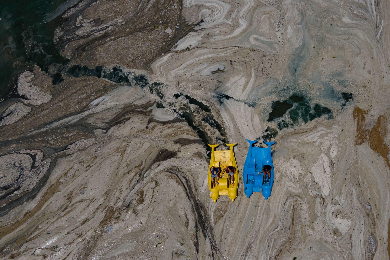 Pedalos push through the Marmara Sea covered with marine mucilage, Kocaeli, Turkey, June 12, 2021. (AFP Photo)