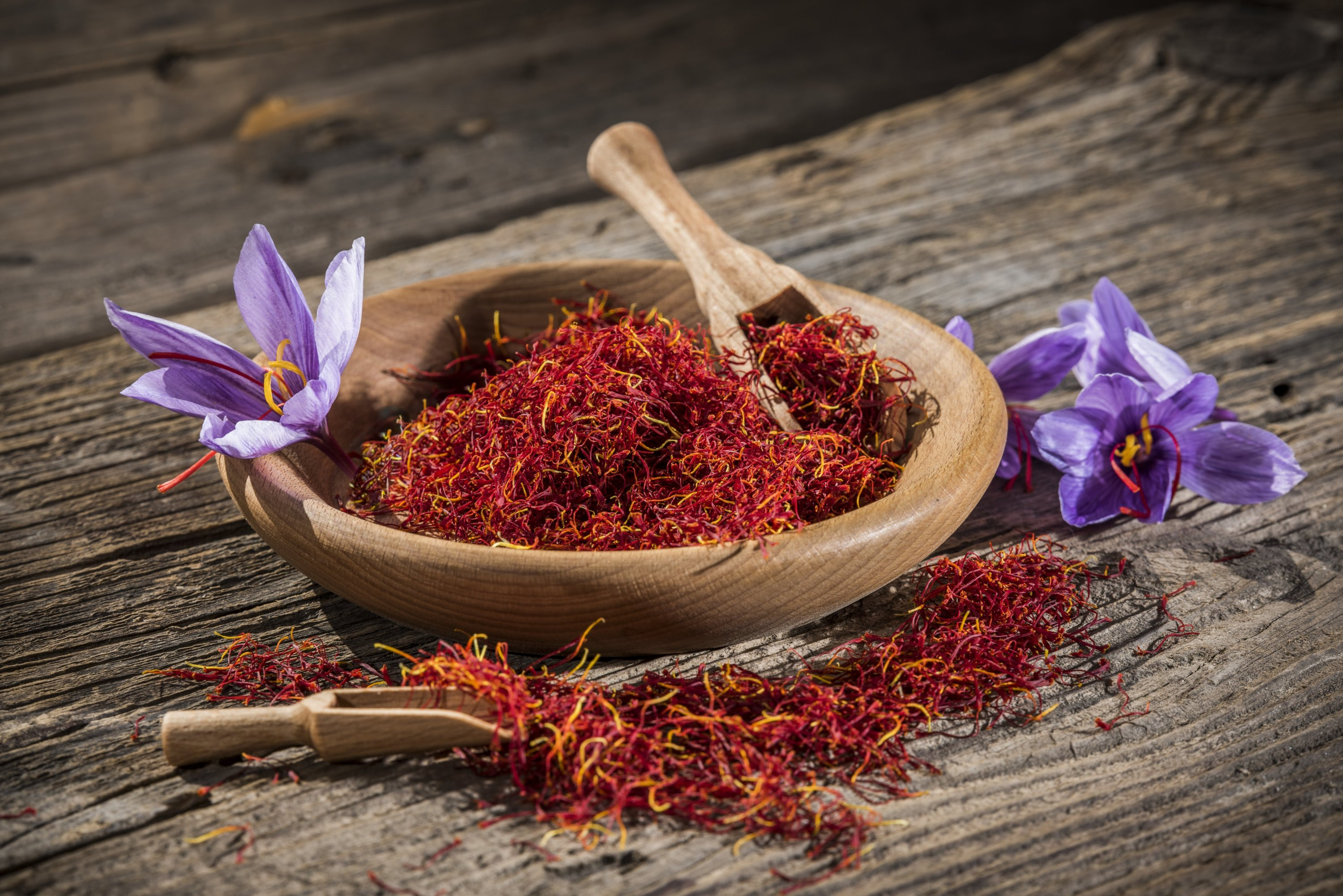 Saffron in a wooden bowl with saffron flowers on the side. (Shutterstock Photo)
