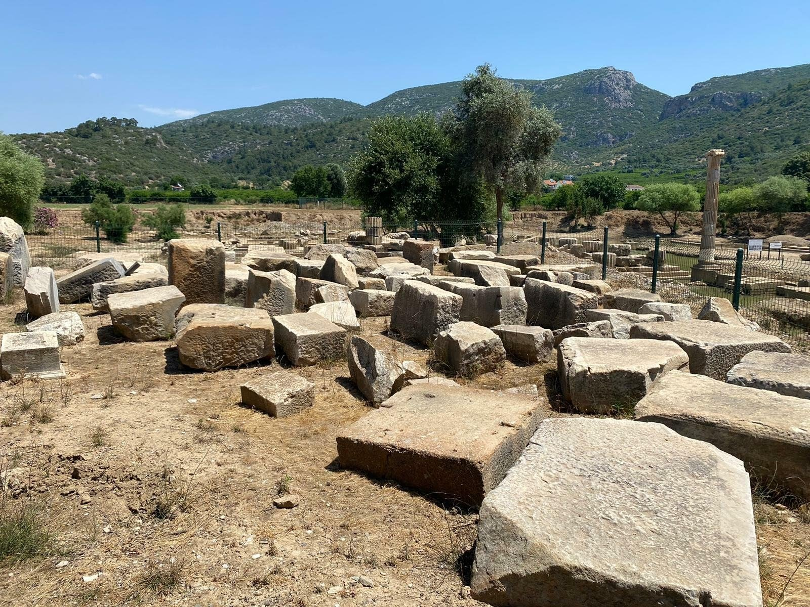 A view of the remains of Claros, Izmir, western Turkey, June 15, 2021. (DHA Photo)
