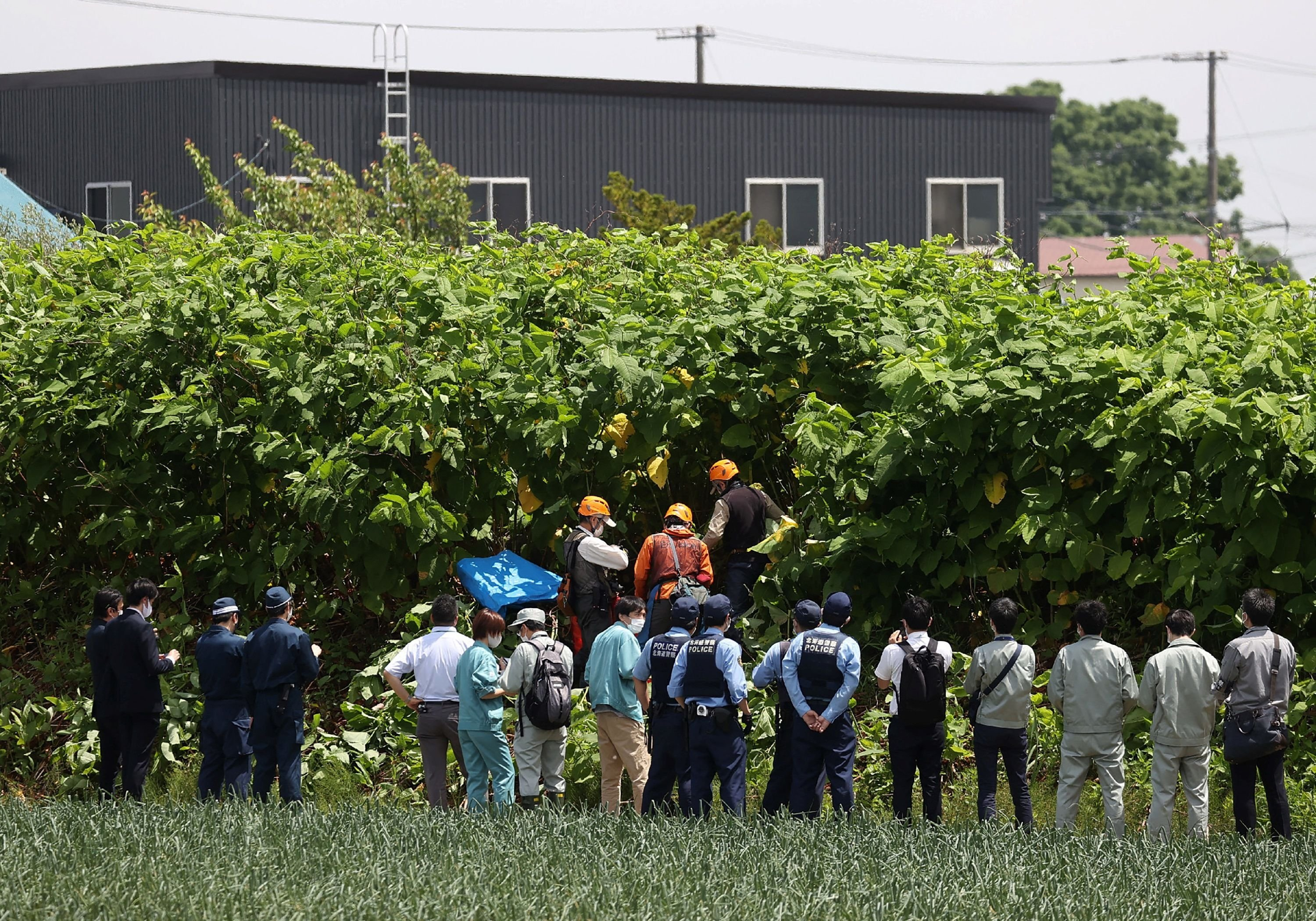 Police officers and members of a hunting group search for a brown bear that is on the loose in Sapporo, Hokkaido prefecture, Japan, June 18, 2021. (AFP Photo)