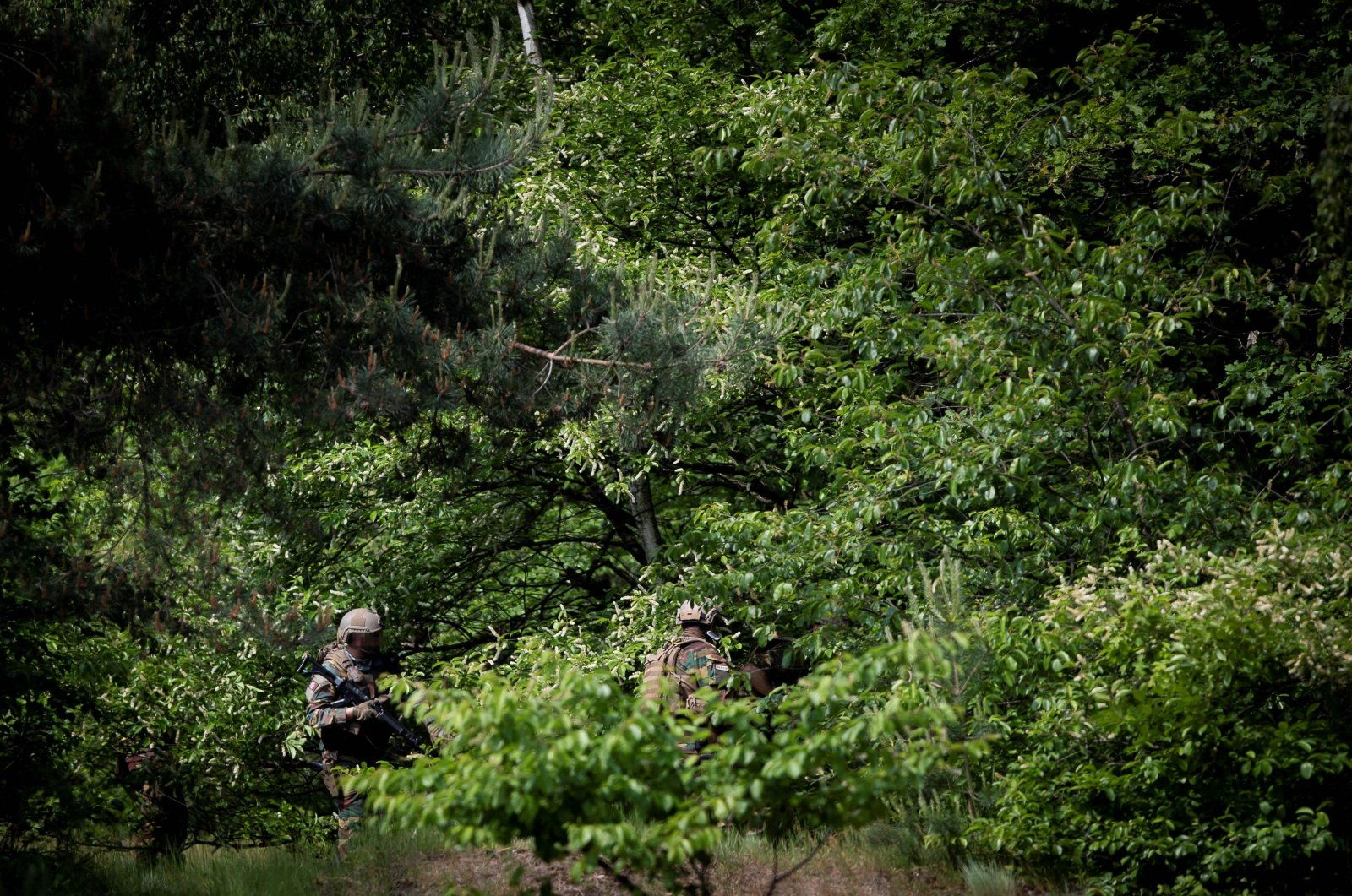 Soldiers search for Jurgen Conings, a heavily armed Belgian soldier with far-right views, in Nationaal Park Hoge Kempen in Maasmechelen, Belgium, on June 4, 2021. (AFP Photo)
