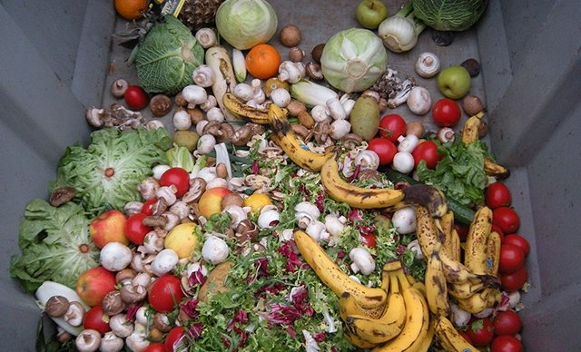 Vegetables and fruit inside a dumpster, in Istanbul, Turkey, June 21, 2021. (DHA PHOTO)