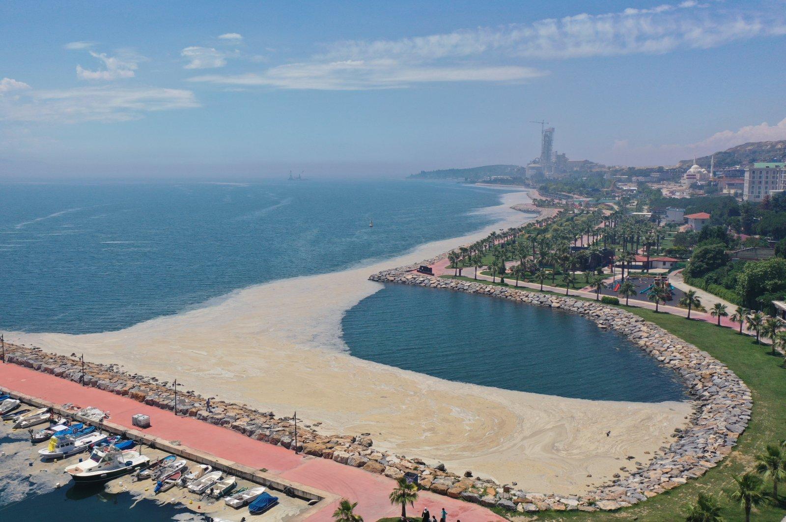 "Marine mucilage, or ""sea snot,"" covers parts of the sea in Darıca district, in Kocaeli, northwestern Turkey, June 20, 2021. (AA PHOTO)"