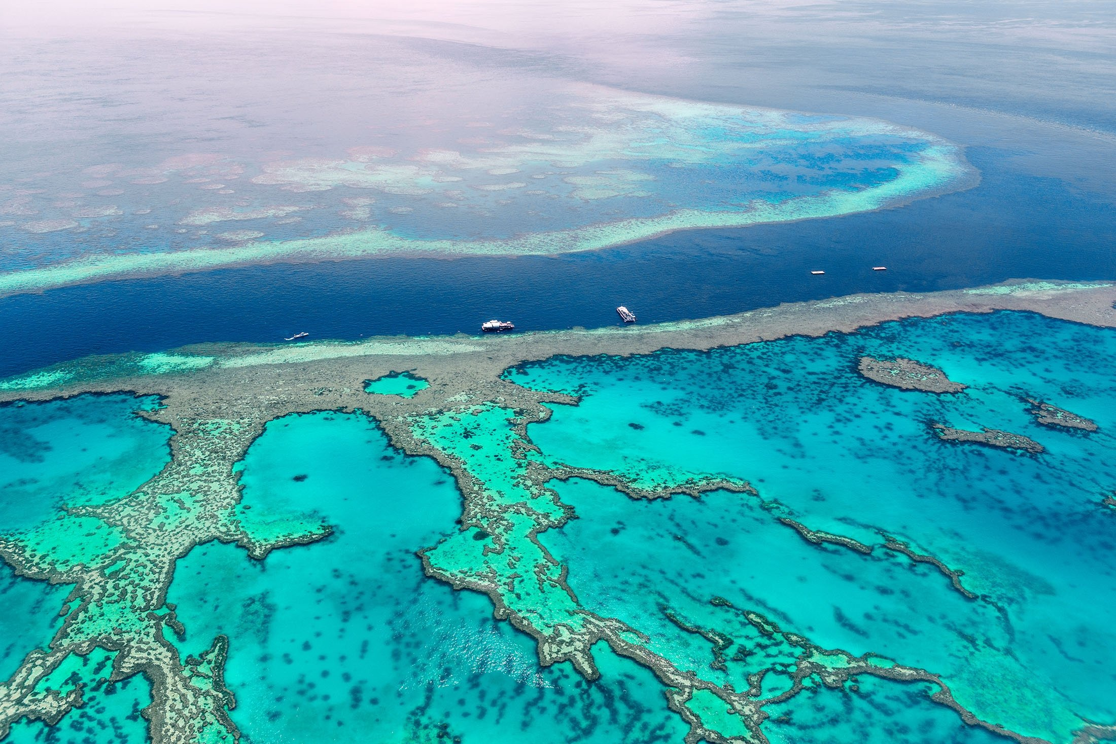 Will Australia's Great Barrier Reef lose its UNESCO status? | Daily Sabah