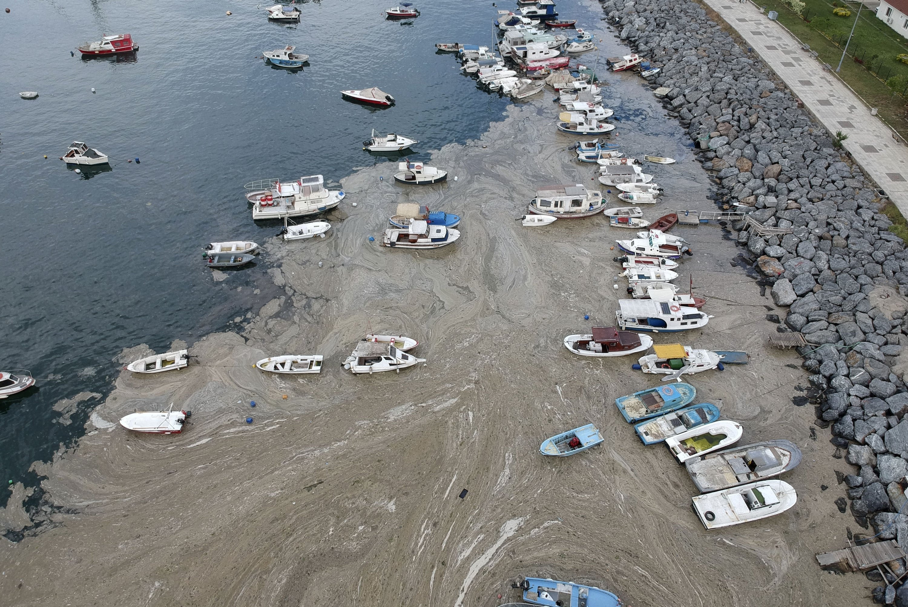 An aerial photo of the Pendik port amid the marine musilage spread, Istanbul, Turkey, June 4, 2021. (AP Photo)