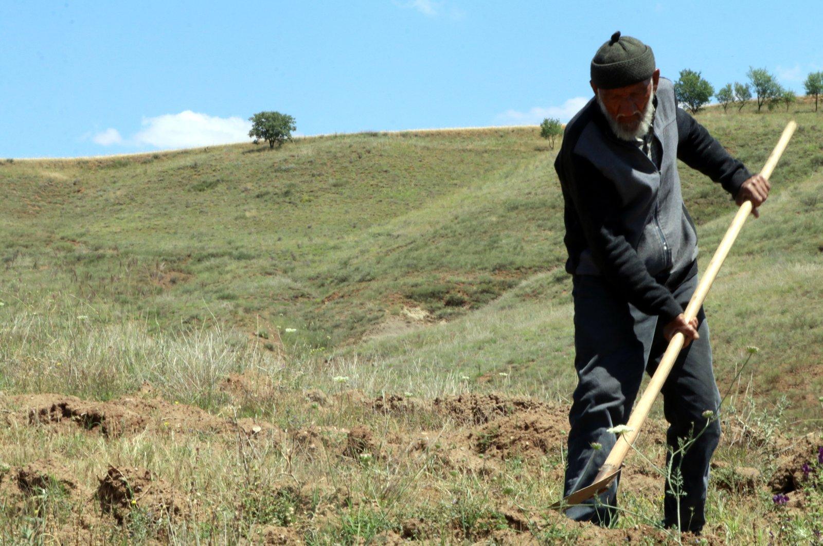 Osman Erol prepares a spot for planting a sapling, in Çankırı, central Turkey, June 28, 2021. (AA PHOTO)