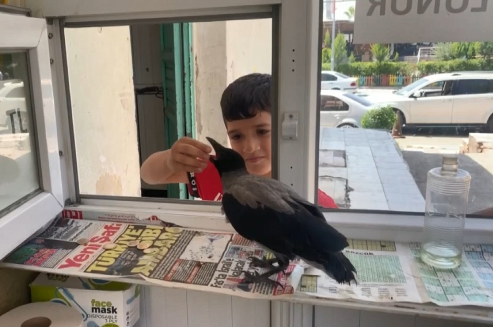 A boy hands money to the crow standing inside the restroom attendant's booth, in Şanlıurfa, southeastern Turkey, June 28, 2021. (IHA PHOTO)
