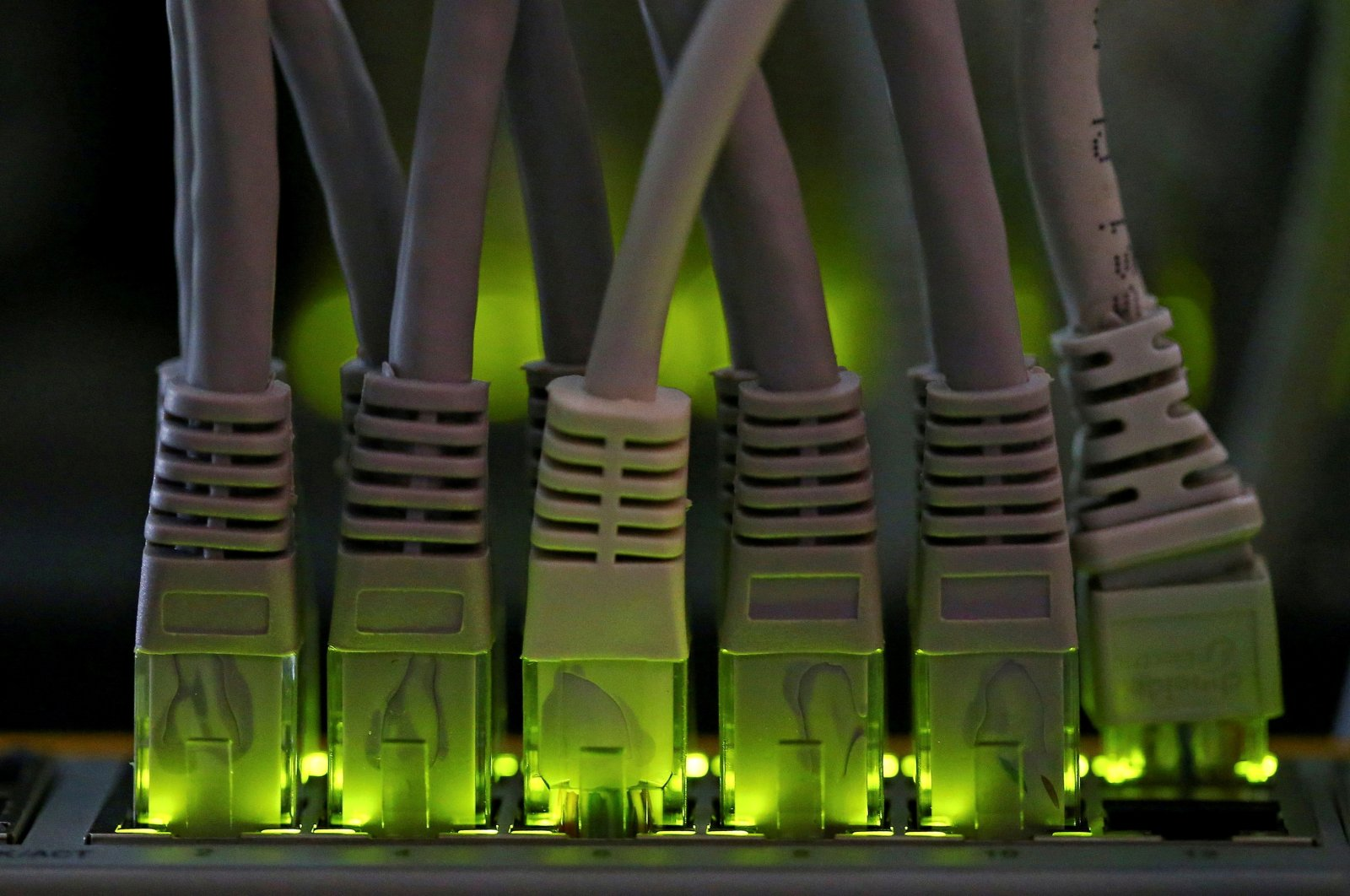 LAN network cables plugged into a Bitcoin mining computer server are pictured in Bitminer Factory in Florence, Italy, April 6, 2018. (Reuters Photo)