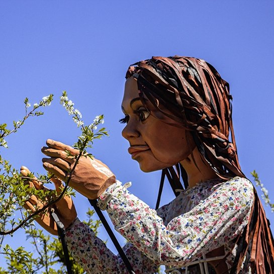 The puppet Little Amal is photographed with branches of a tree.
