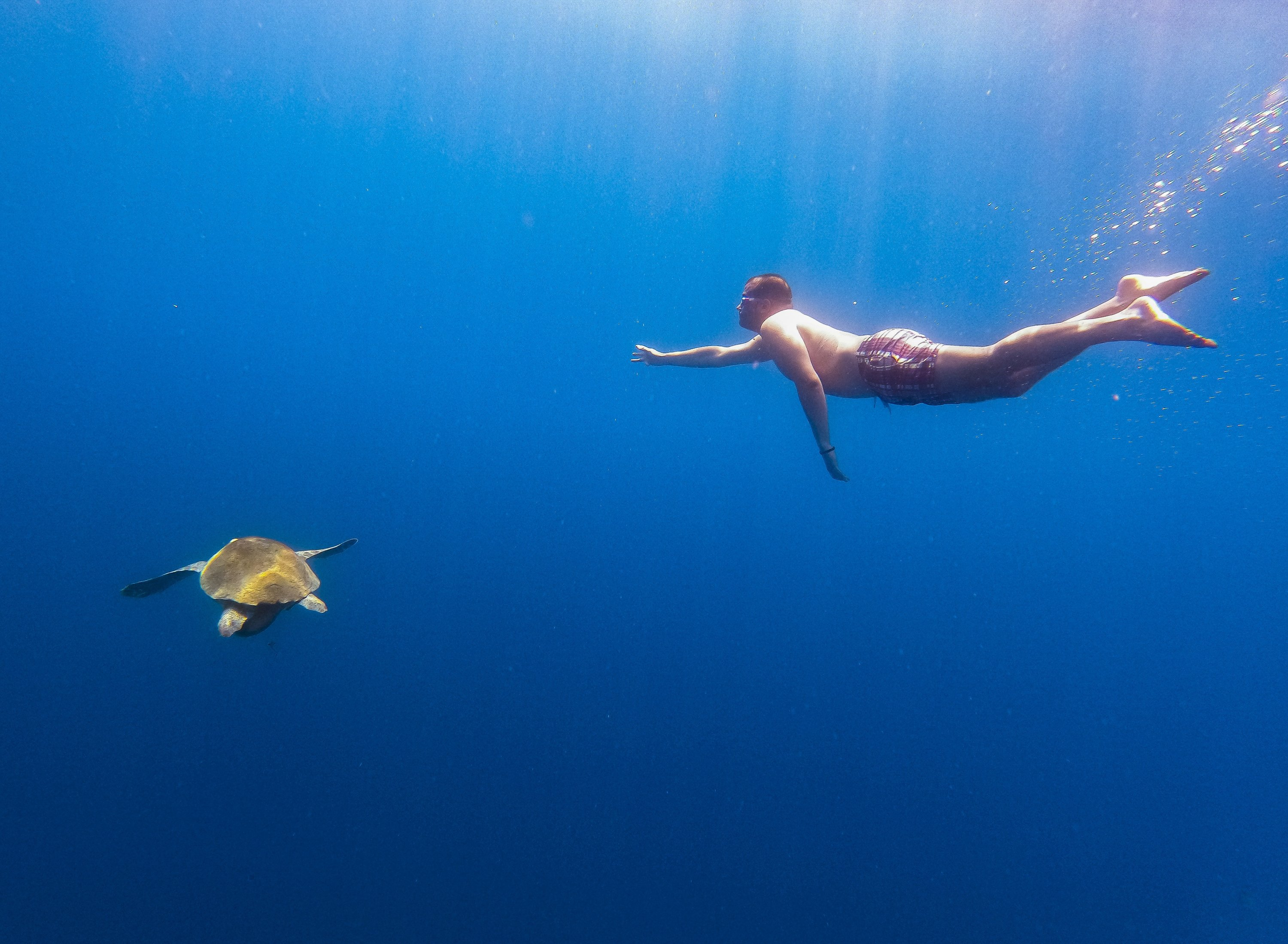 The bays of Göcek in the famed coastal city of Fethiye in the Muğla province are a favorite of freedivers. (AA Photo)