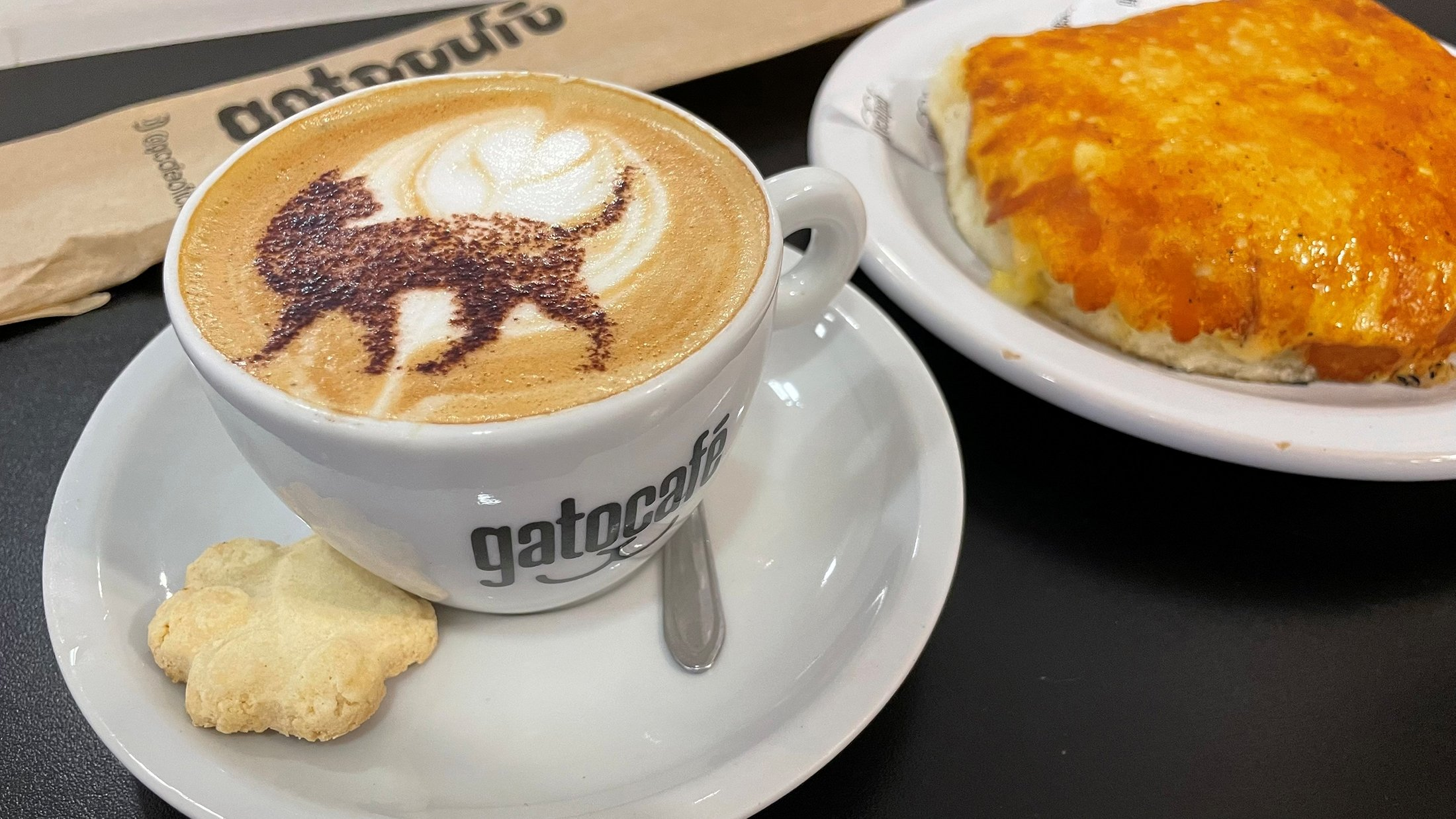 Tea or coffee, meow? Rio cafe combines lattes with cats | Daily Sabah