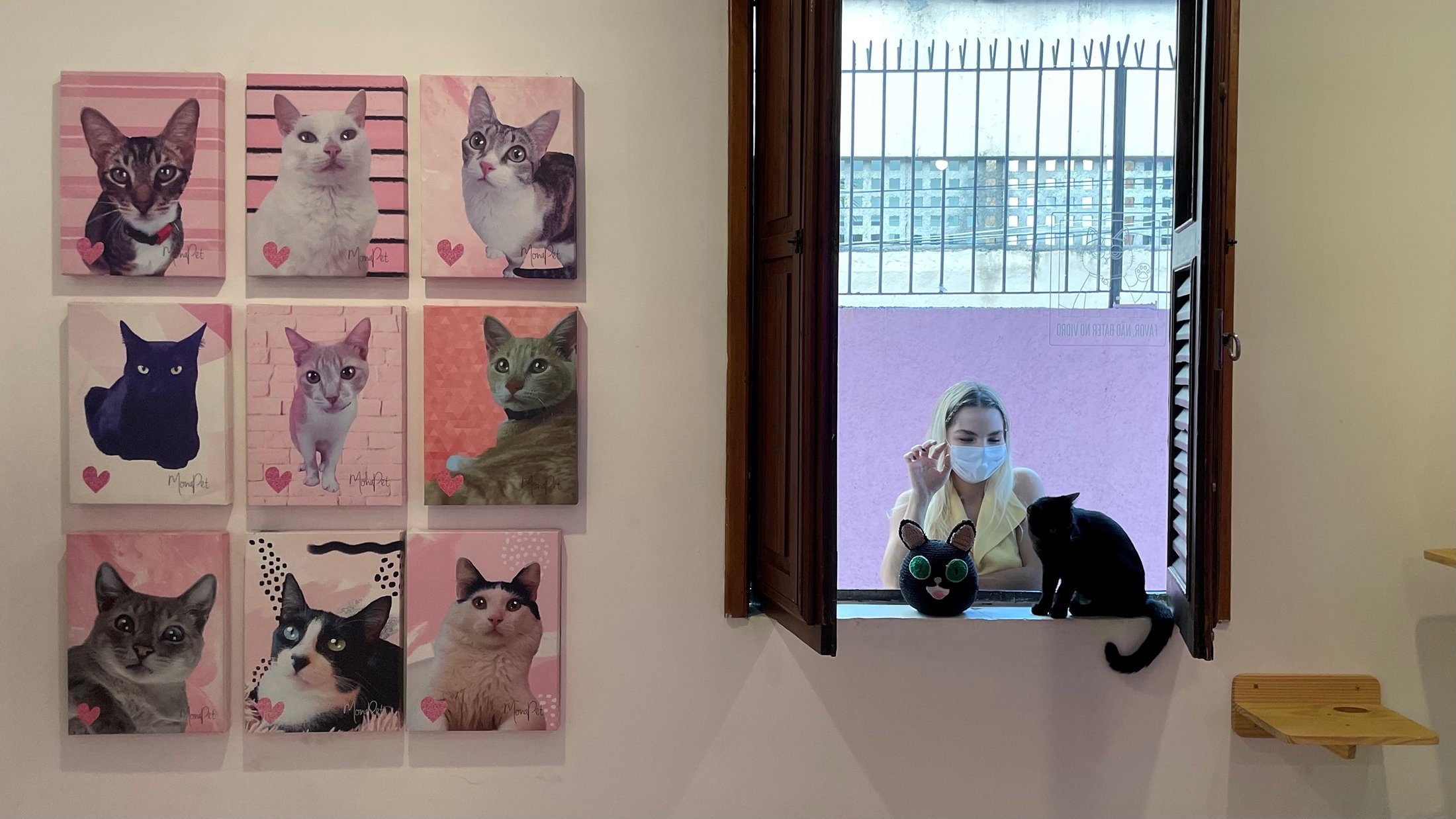 A woman looks at a cat at the Rio cat cafe or Gato Cafe, where customers can relax while adopting a feline, in Rio de Janeiro, Brazil, July 10, 2021. (Reuters Photo)