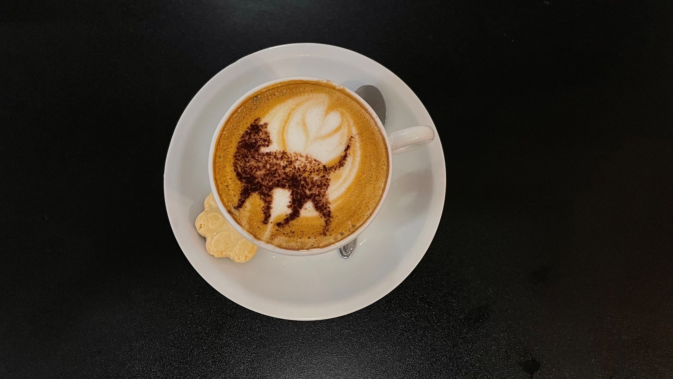 A cappuccino with an image of a cat is pictured at the Rio cat cafe or Gato Cafe, where customers can relax while adopting a feline, in Rio de Janeiro, Brazil, July 10, 2021. (Reuters Photo)