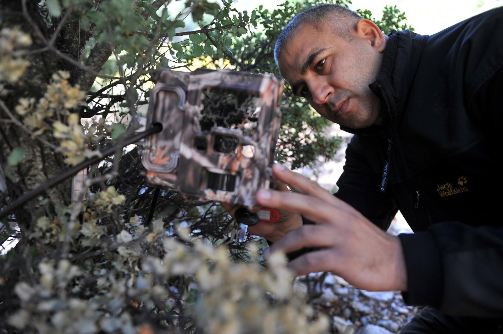 A researcher sets up a camera trap in Antalya, southern Turkey, Oct. 31, 2010. (AA PHOTO)