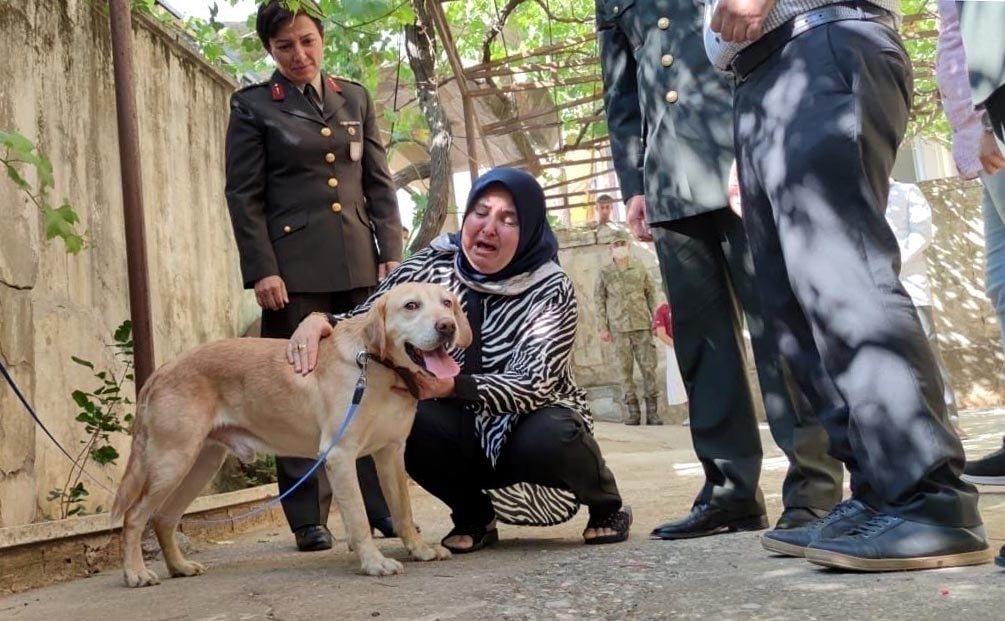 Remziye Akdal cries as she pets Atmaca, in Kahramanmaraş, Turkey, July 18, 2021. (DHA PHOTO)