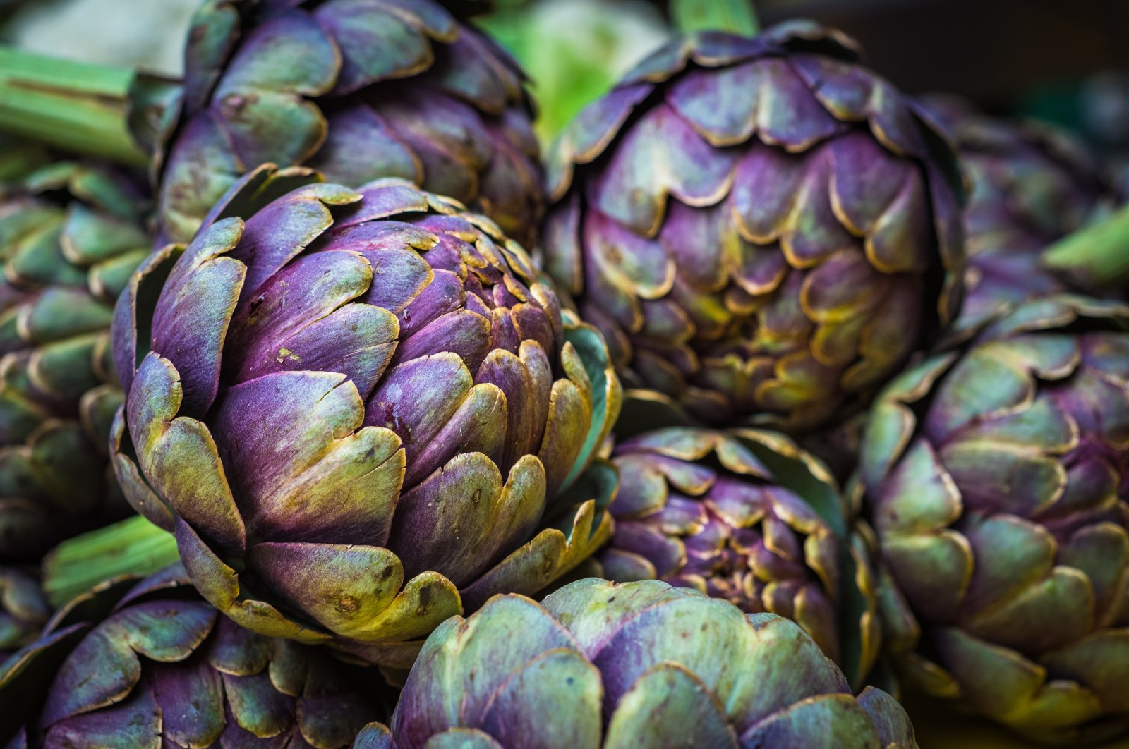 Fresh artichokes at a farmers market. (Shutterstock Photo)