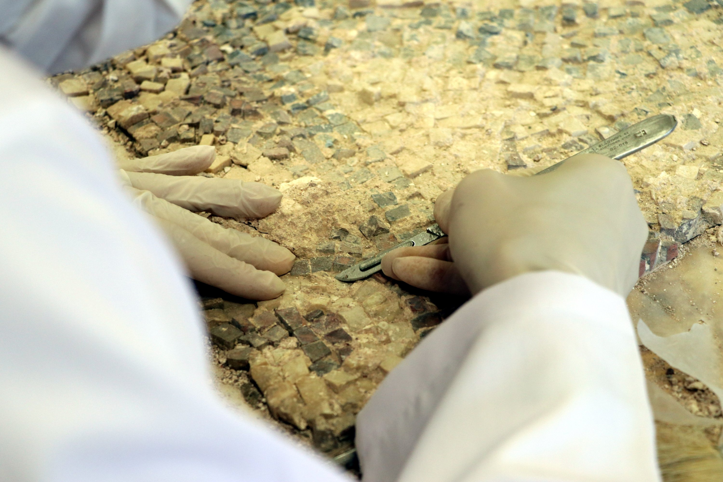 A close-up of the hands of a restorer working on the mosaic in Hatay Archaeology Museum, Hatay, southern Turkey, July 25, 2021. (AA Photo)