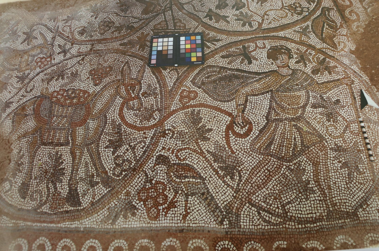A view from the mosaic in Hatay Archaeology Museum, Hatay, southern Turkey, July 25, 2021. (AA Photo)
