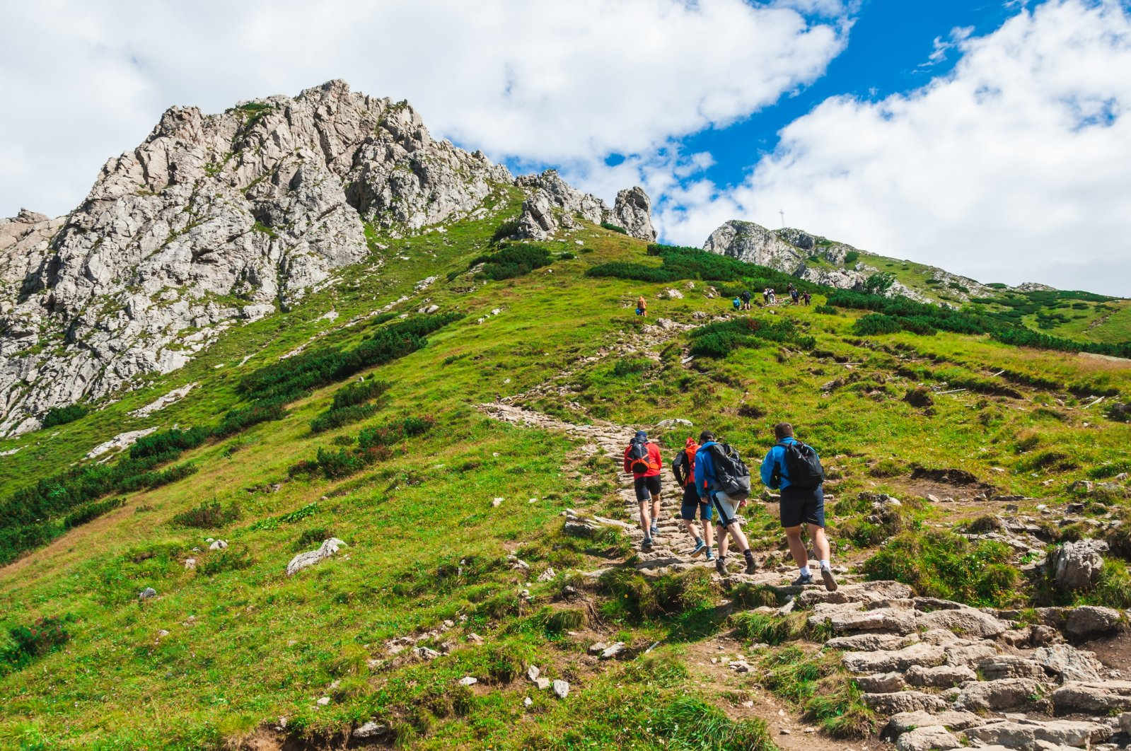 Being consciously aware of nature around you is proven to have a vitalizing effect. (Shutterstock Photo)