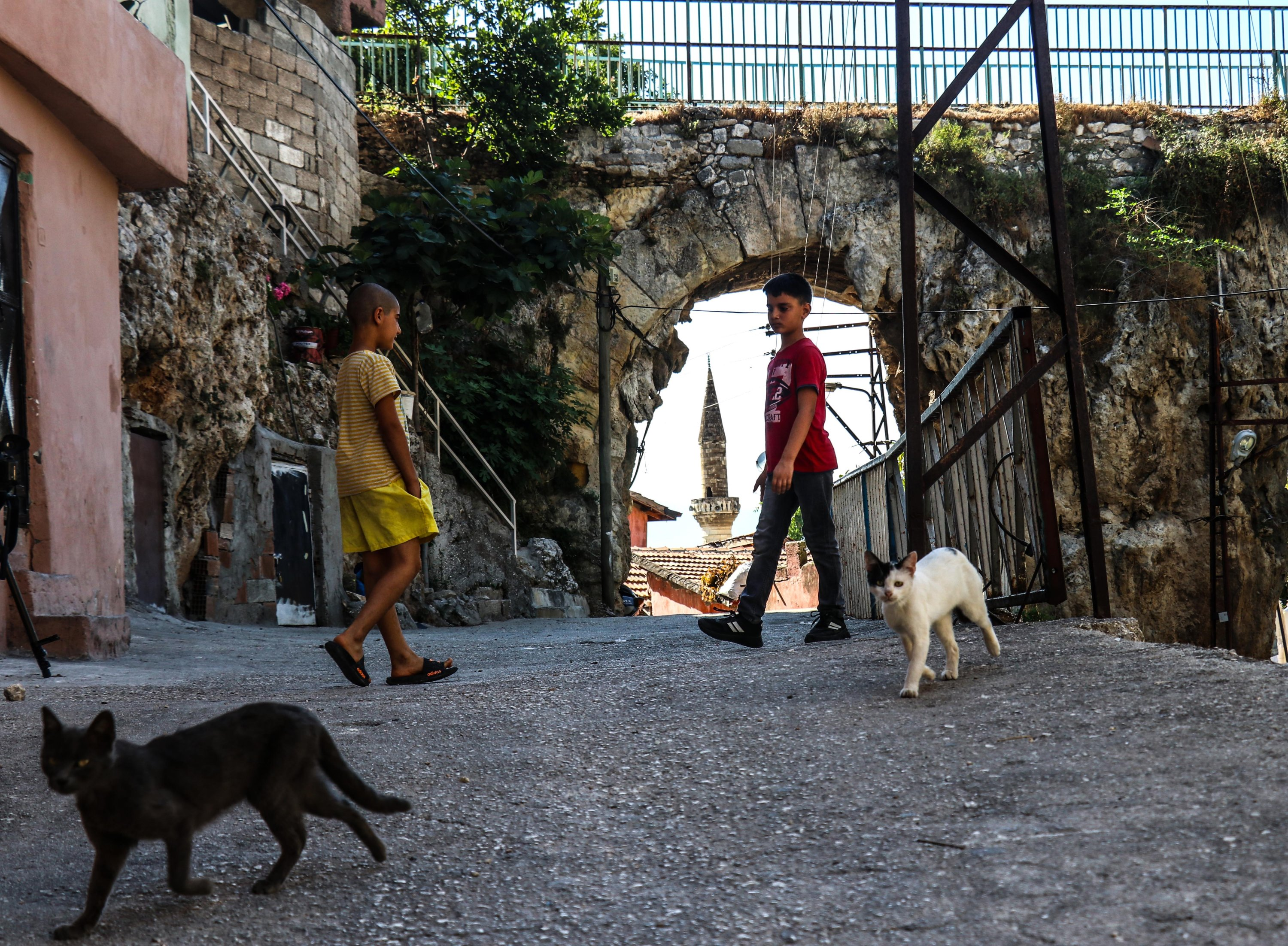 Cats and kids play near the arches of an aqueduct in Hatay, Turkey, July 27, 2021. (AA Photo).