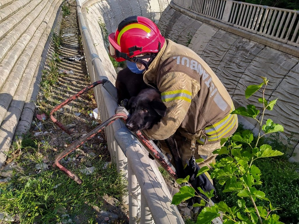 Firefighters carry a dog to safety after he is stranded on the bank of a stream in Sancaktepe district, in Istanbul, Turkey, May 27, 2021. (COURTESY OF FIRE DEPARTMENT OF ISTANBUL METROPOLITAN MUNICIPALITY)