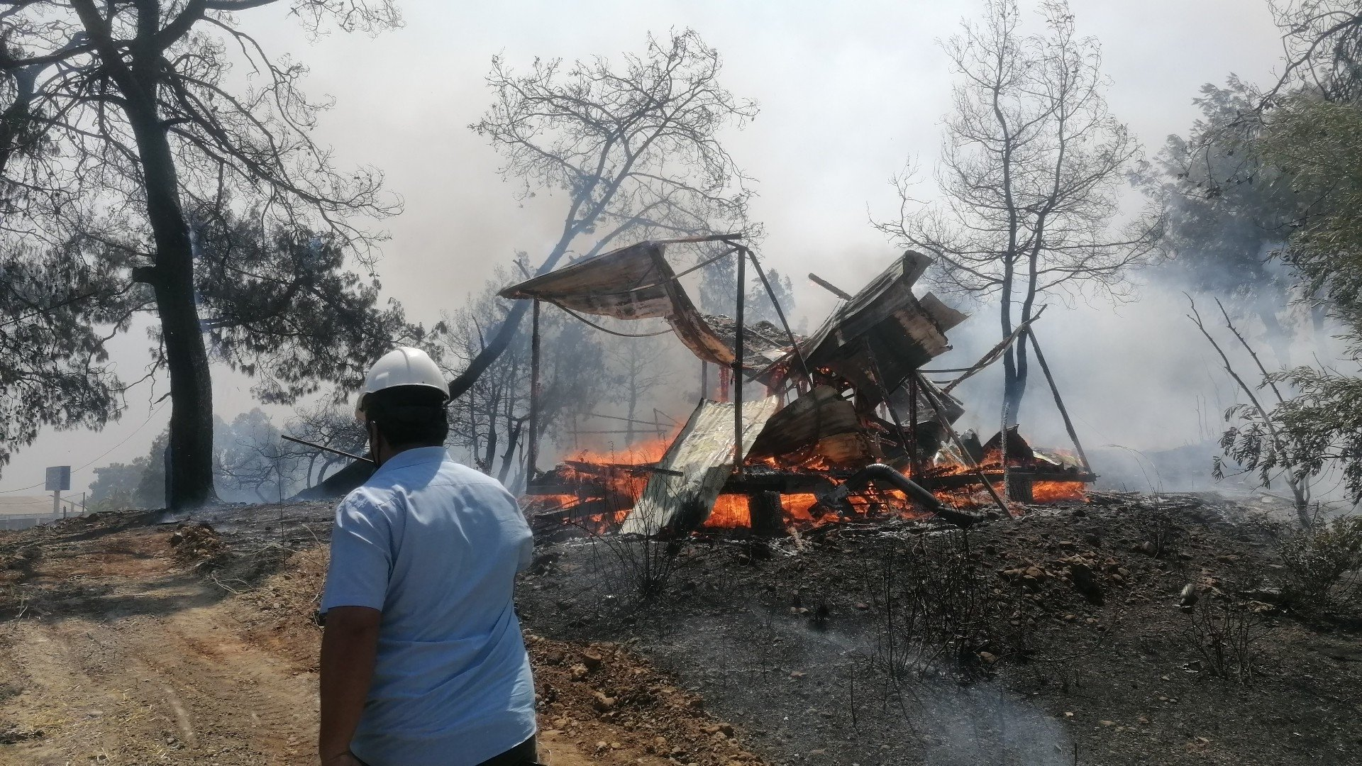A man watches as flames destroy a shack inside the forest in Manavgat district, in Antalya, southern Turkey, July 28, 2021. (İHA PHOTO)
