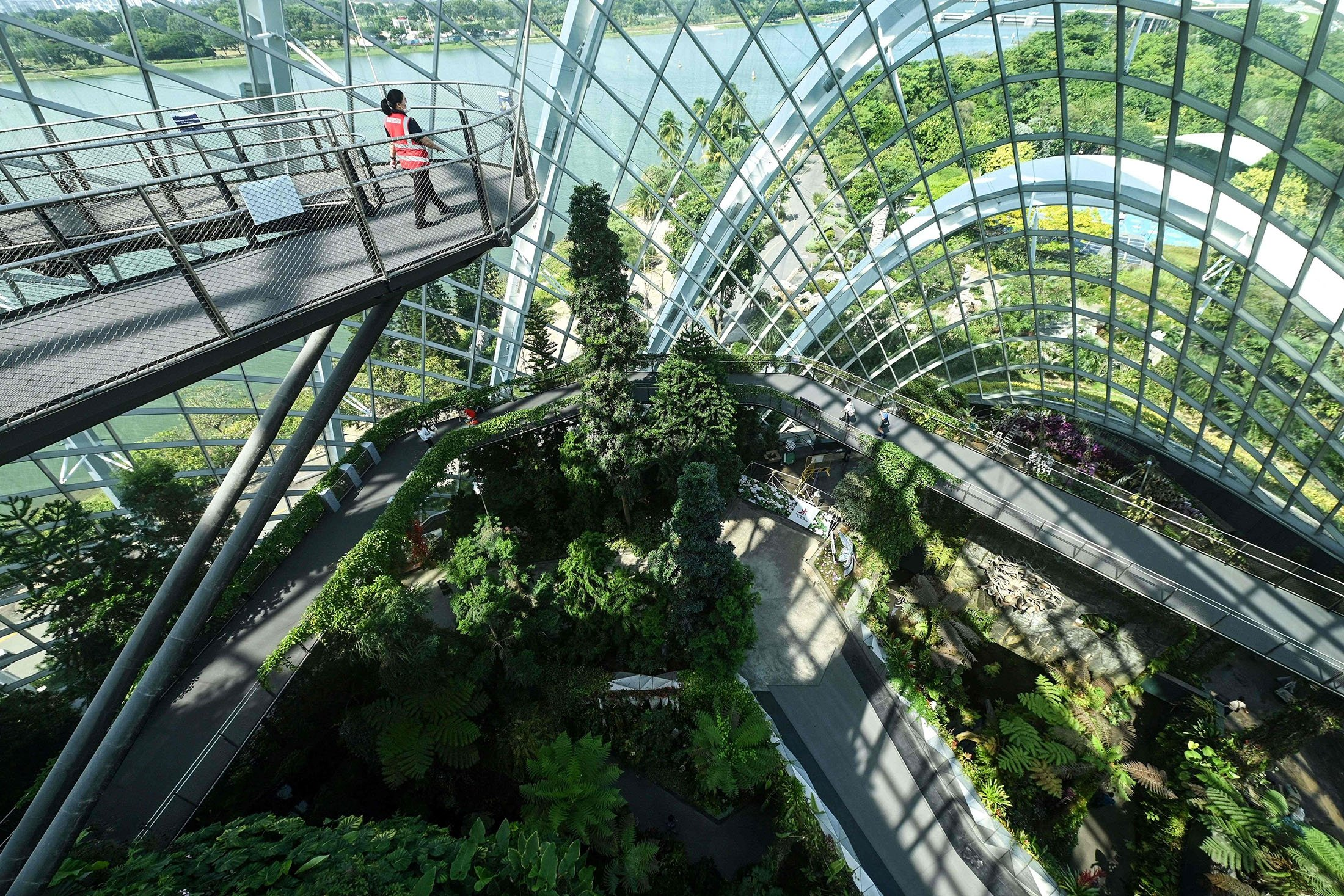 A view inside the Cloud Forest at Gardens by the Bay in Singapore, July 26, 2021. (AFP Photo)