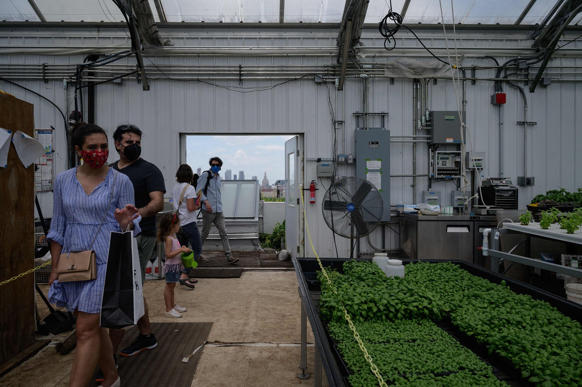 People visit the Brooklyn Grange rooftop farming company and sustainability center during an open day, in the New York City borough of Brooklyn, U.S., May 23, 2021. (AFP Photo)
