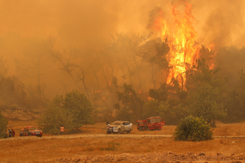 Flames engulf a forest in Osmaniye, southern Turkey, July 29, 2021. (AA PHOTO)