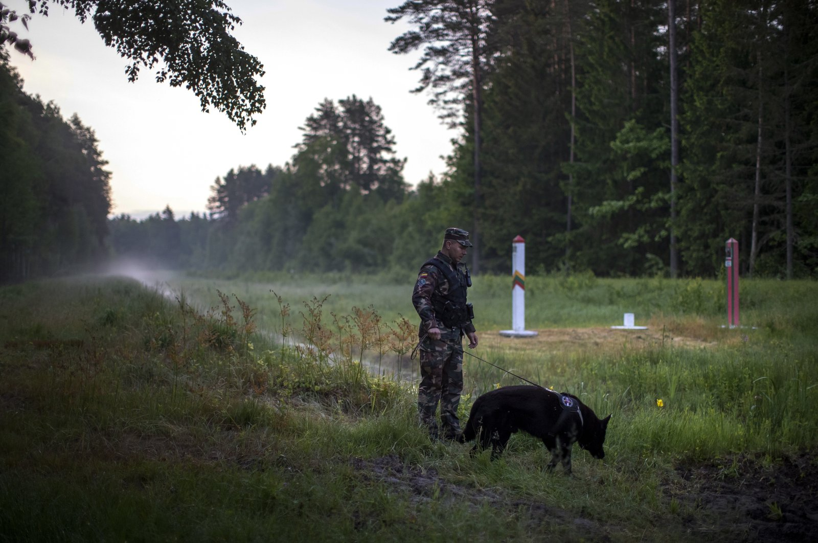 A member of the Lithuania State Border Guard Service patrols on the border with Belarus. Around him are the Belarusian (right) and Lithuanian (second right) border markers, near small town Kapciamiestis, some 160km (100 miles) of the capital Vilnius, Lithuania, June 10, 2021. (AP Photo)