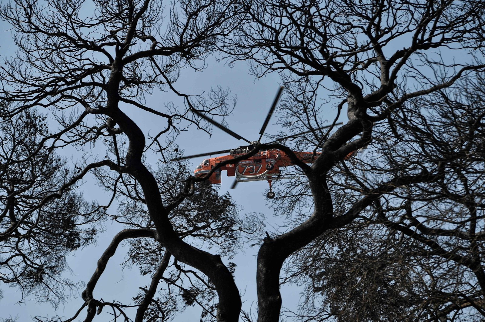 A firefighter plane flies over a burnt area at the seaside resort of Labiri (Lambiri) east of the city of Patras, Greece, on Aug. 1, 2021. (AFP Photo)
