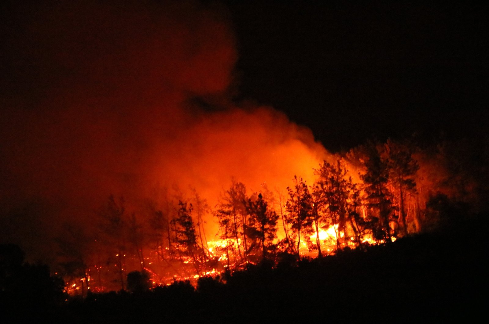 Flames engulf a forest in the Gündoğdu neighborhood of Manavgat district, in Antalya, southern Turkey, Aug. 2, 2021. (DHA PHOTO)