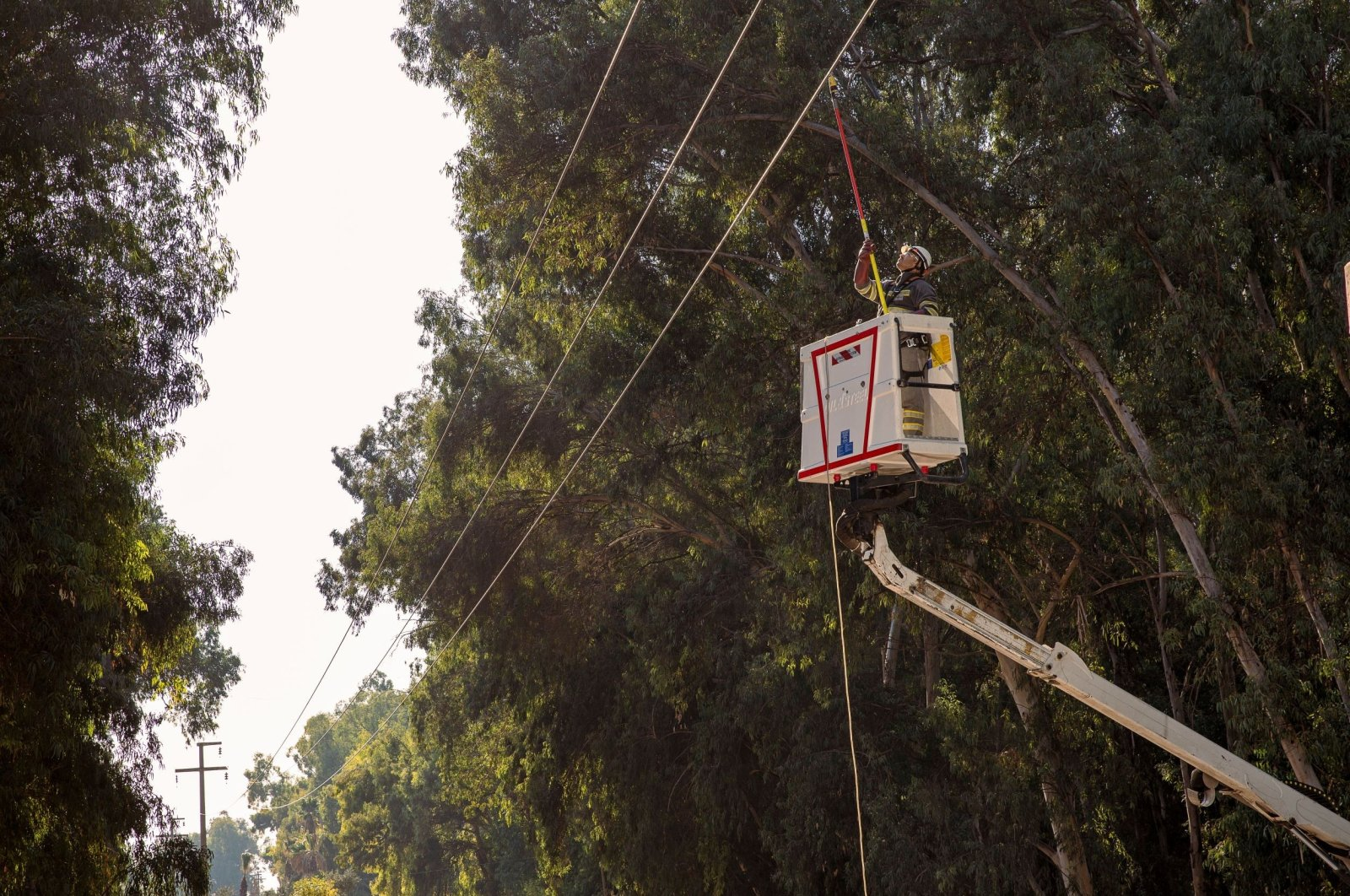 A worker does maintenance work on a power line, in Mersin, southern Turkey, Aug. 2, 2021. (İHA PHOTO)