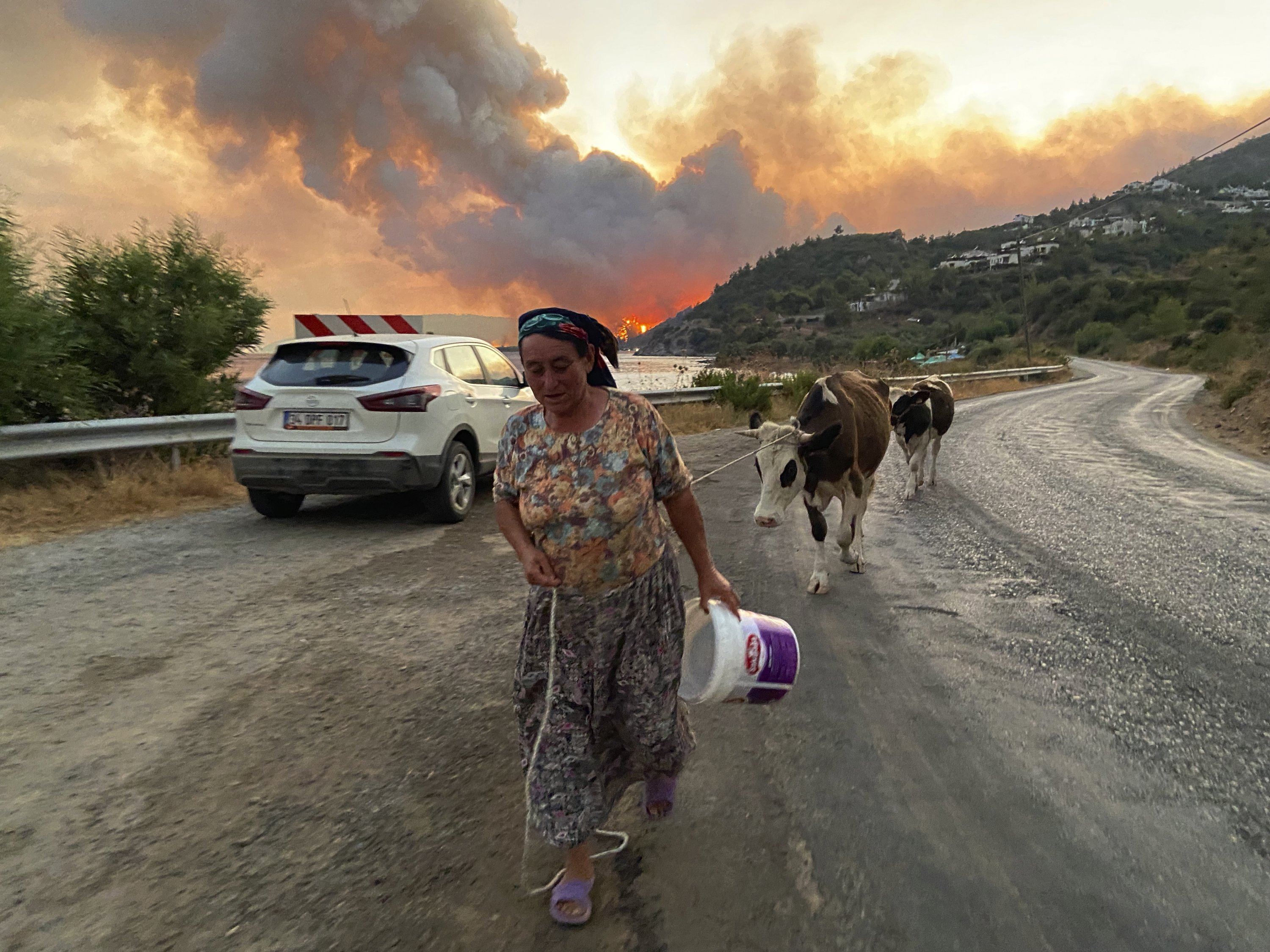 A woman leaves with her animals from an advancing fire raging in the Çökertme neighborhood, near Bodrum, in Muğla, southwestern Turkey, Aug. 2, 2021. (AP PHOTO)