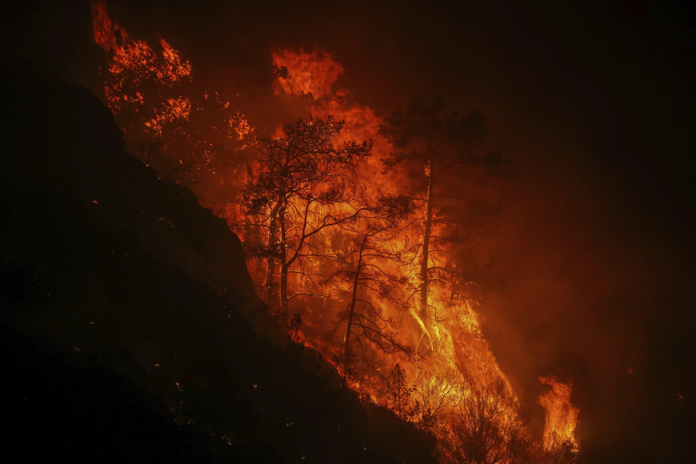 Trees burn in an advancing fire raging at Çökertme village, near Bodrum, Muğla, Turkey, Aug. 2, 2021. (AP Photo)