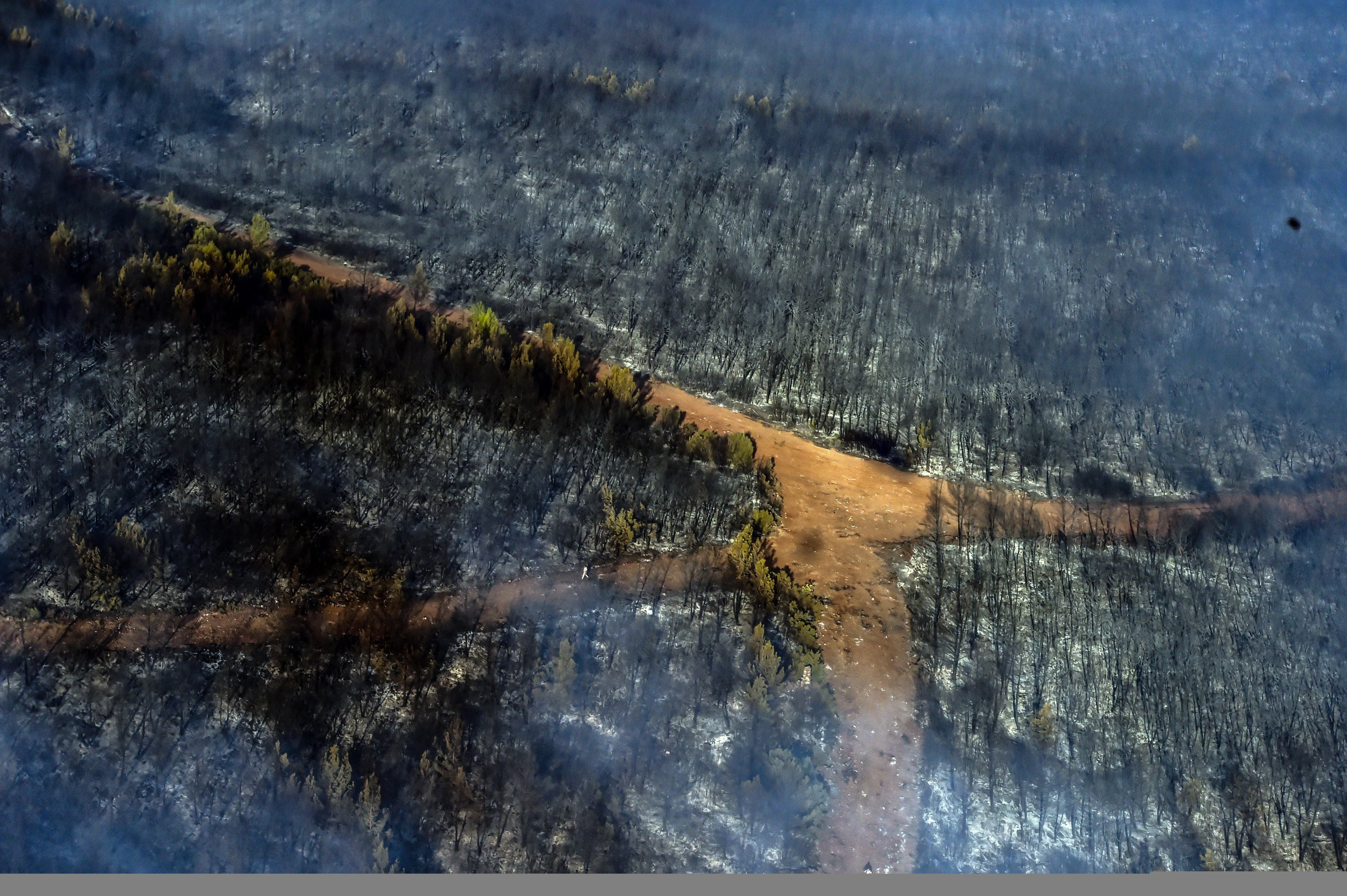 An aerial view of burned forests in Marmaris, Muğla, southwestern Turkey, Aug. 3, 2021. (İHA PHOTO)