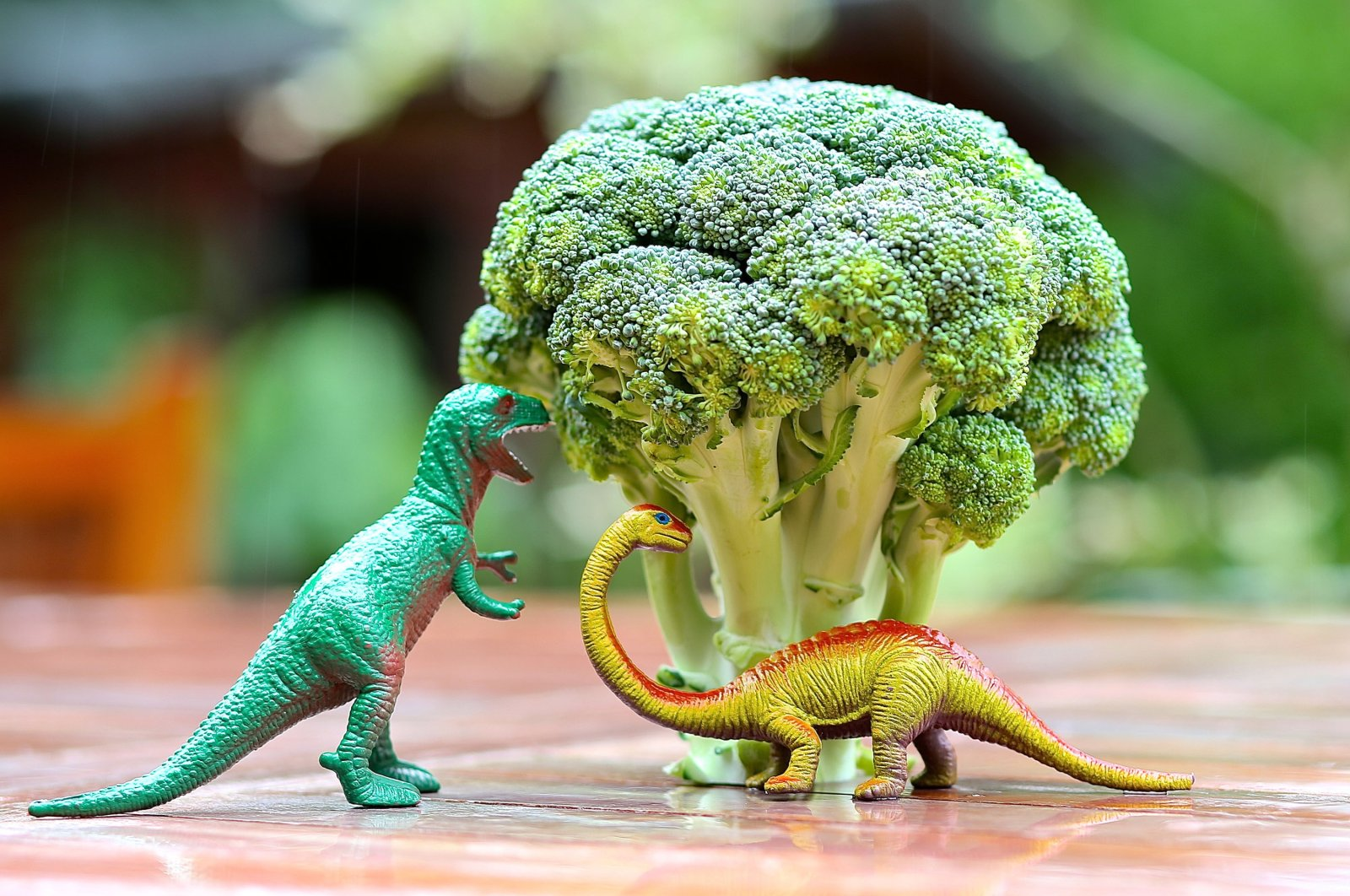 Toy dinosaurs appear to be eating from a broccoli tree. (Shutterstock Photo)