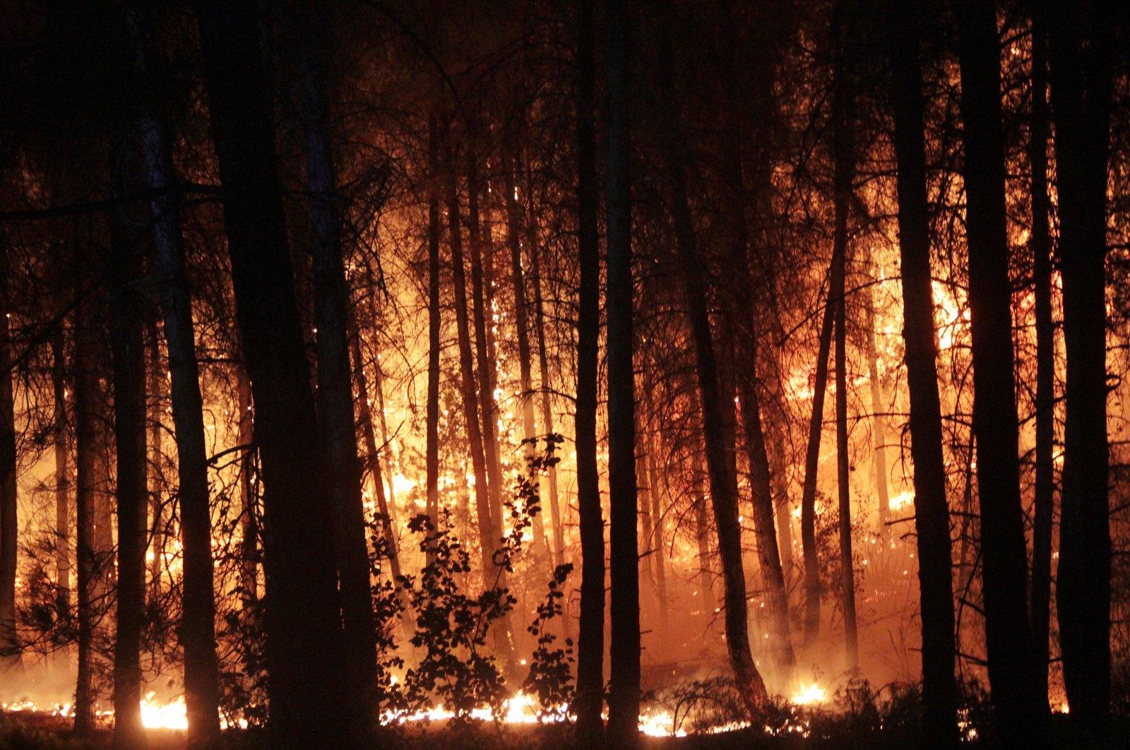 Flames engulf trees in the Muratlar neighborhood of Menteşe district, in Muğla, southwestern Turkey, Aug. 4, 2021. (İHA PHOTO)